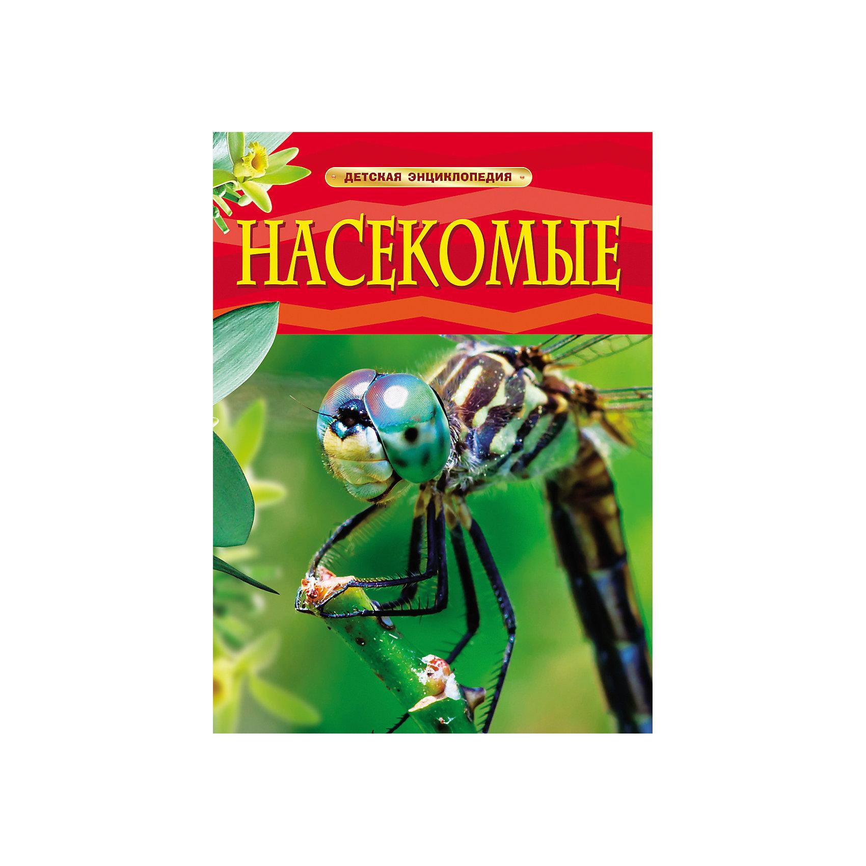 Росмэн Насекомые, Детская энциклопедия росмэн акулы детская энциклопедия росмэн
