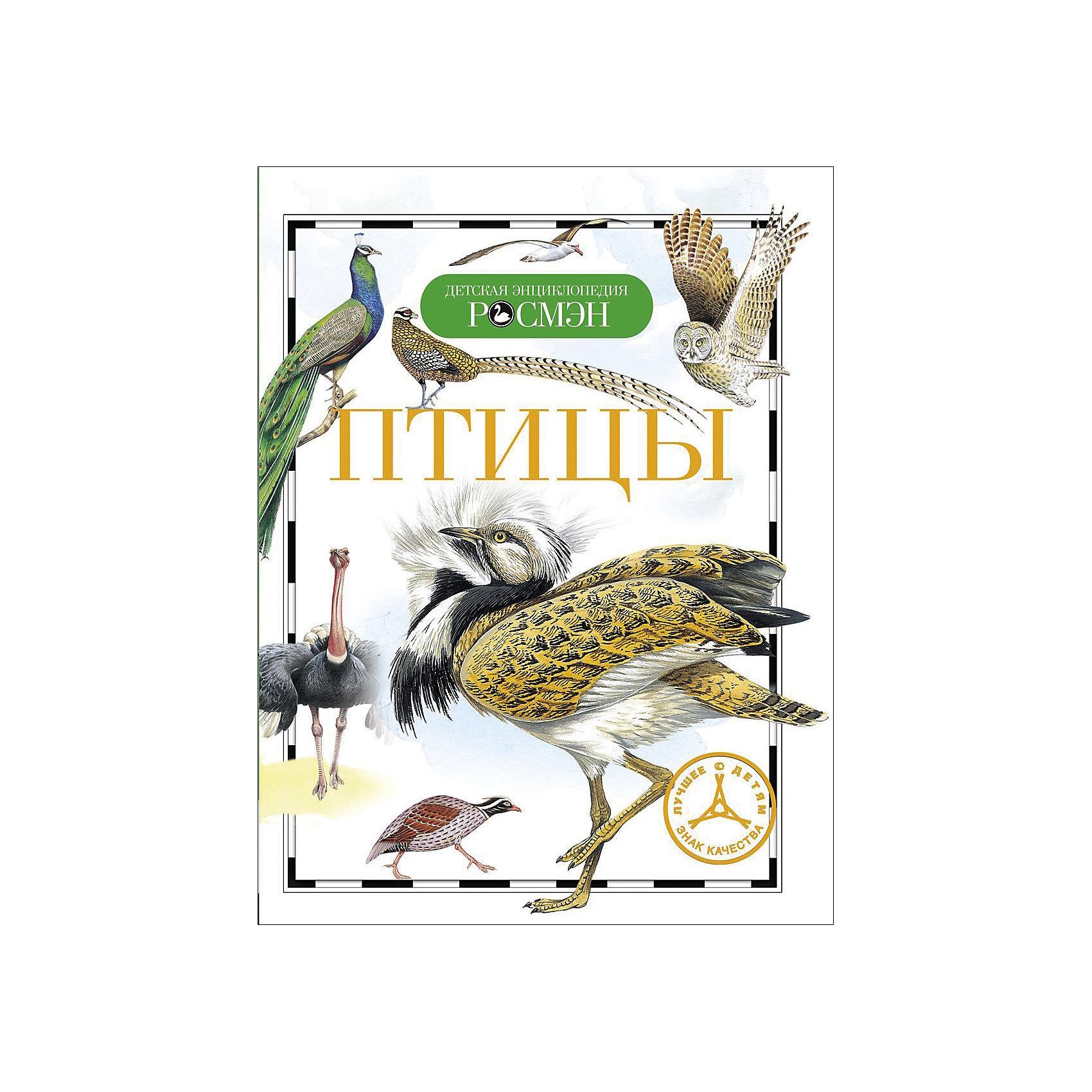 ПтицыЭнциклопедии<br>Характеристики товара:<br><br>- цвет: разноцветный;<br>- материал: бумага;<br>- страниц: 96;<br>- формат: 17 x 21 см;<br>- обложка: твердая;<br>- цветные иллюстрации.<br><br>Эта интересная книга с иллюстрациями станет отличным подарком для ребенка. Она содержит в себе ответы на вопросы, которые интересуют малышей. Всё представлено в очень простой форме! Талантливый иллюстратор дополнил книгу качественными рисунками, которые помогают ребенку понять суть многих вещей в нашем мире. Удивительные и интересные факты помогут привить любовь к учебе!<br>Чтение - отличный способ активизации мышления, оно помогает ребенку развивать зрительную память, концентрацию внимания и воображение. Издание произведено из качественных материалов, которые безопасны даже для самых маленьких.<br><br>Книгу Птицы от компании Росмэн можно купить в нашем интернет-магазине.<br><br>Ширина мм: 220<br>Глубина мм: 165<br>Высота мм: 8<br>Вес г: 221<br>Возраст от месяцев: 84<br>Возраст до месяцев: 108<br>Пол: Унисекс<br>Возраст: Детский<br>SKU: 5109992