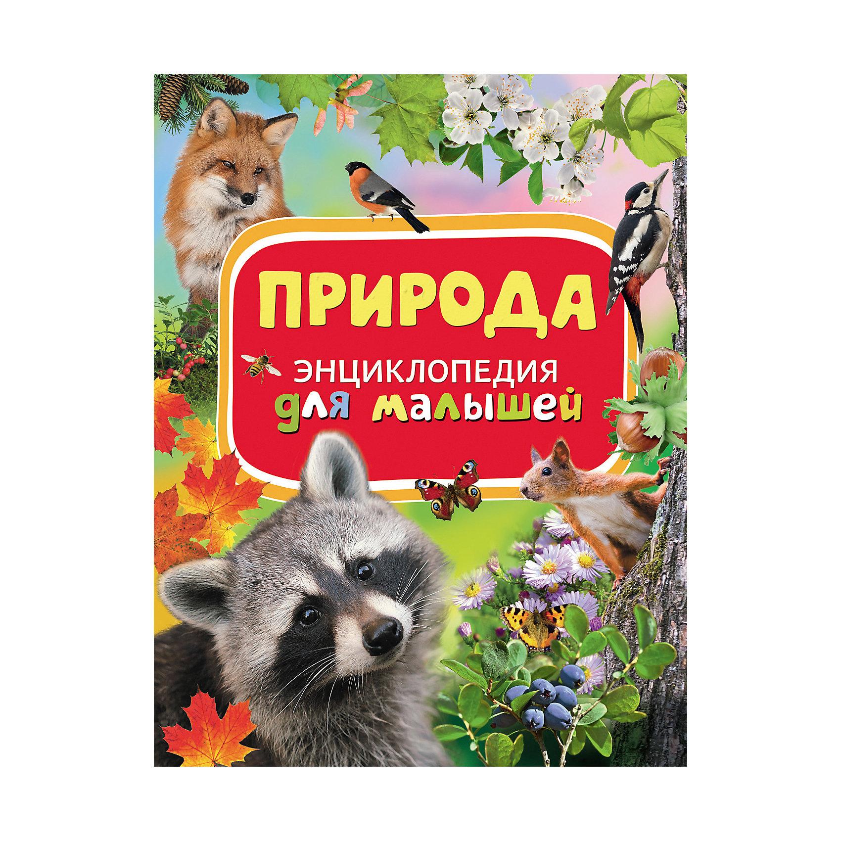 Природа, Энциклопедия для малышейЭнциклопедии для малышей<br>Характеристики товара:<br><br>- цвет: разноцветный;<br>- материал: бумага;<br>- страниц: 88;<br>- формат: 22 х 29 см;<br>- обложка: твердая;<br>- цветные иллюстрации.<br><br>Эта интересная книга с иллюстрациями станет отличным подарком для ребенка. Она содержит в себе ответы на вопросы, которые интересуют малышей. Всё представлено в очень простой форме! Талантливый иллюстратор дополнил книгу качественными рисунками, которые помогают ребенку понять суть многих вещей в нашем мире. Удивительные и интересные факты помогут привить любовь к учебе!<br>Чтение - отличный способ активизации мышления, оно помогает ребенку развивать зрительную память, концентрацию внимания и воображение. Издание произведено из качественных материалов, которые безопасны даже для самых маленьких.<br><br>Книгу Природа, Энциклопедия для малышей  от компании Росмэн можно купить в нашем интернет-магазине.<br><br>Ширина мм: 282<br>Глубина мм: 217<br>Высота мм: 10<br>Вес г: 478<br>Возраст от месяцев: 36<br>Возраст до месяцев: 72<br>Пол: Унисекс<br>Возраст: Детский<br>SKU: 5110002
