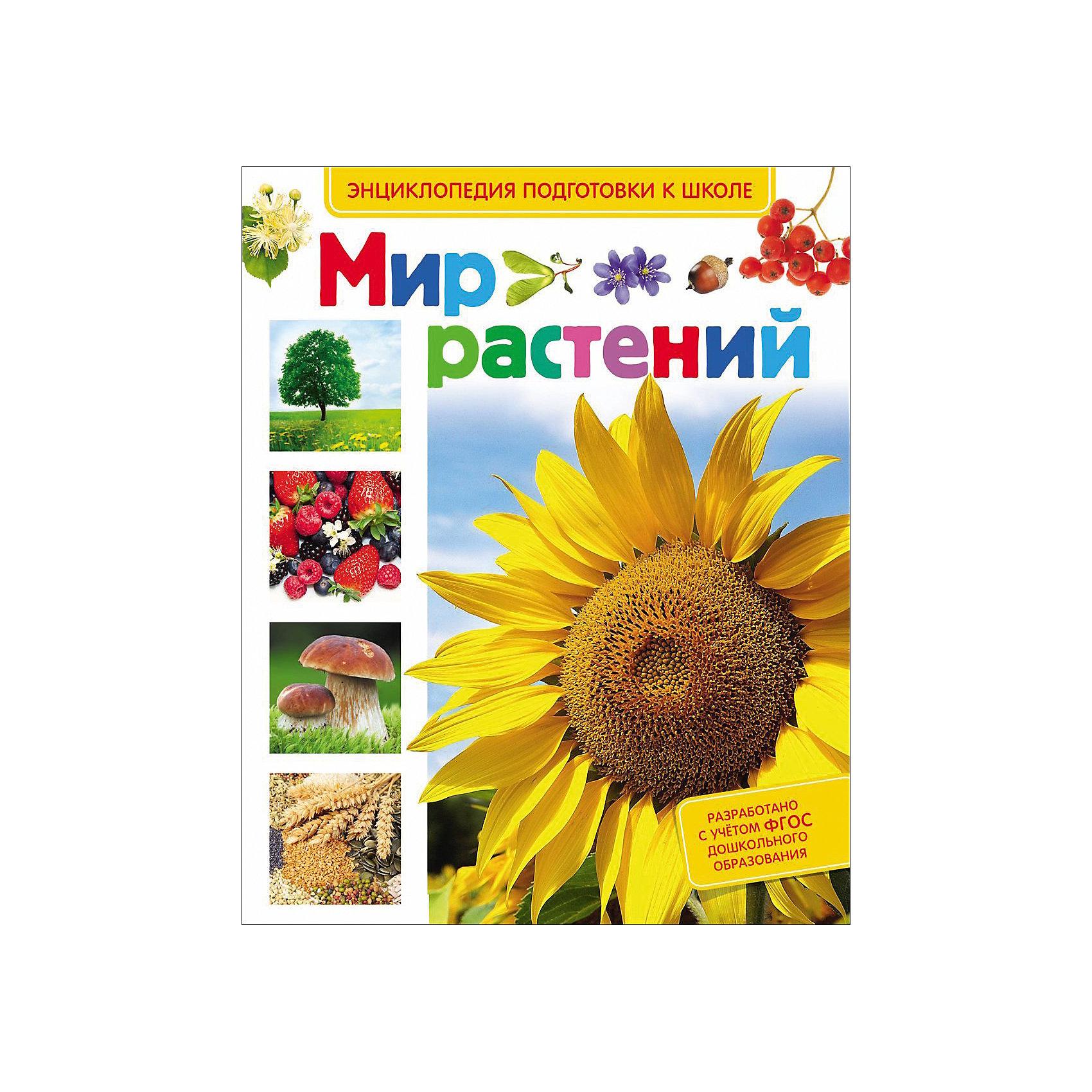 Мир растений (Энциклопедия подготовки к школе)Характеристики товара:<br><br>- цвет: разноцветный;<br>- материал: бумага;<br>- страниц: 64;<br>- формат: 20 х 29 см;<br>- обложка: твердая;<br>- цветные иллюстрации.<br><br>Эта интересная книга с иллюстрациями станет отличным подарком для ребенка. Она содержит в себе ответы на вопросы, которые интересуют малышей. Всё представлено в очень простой форме! Талантливый иллюстратор дополнил книгу качественными рисунками, которые помогают ребенку понять суть многих вещей в нашем мире. Удивительные и интересные факты помогут привить любовь к учебе!<br>Чтение - отличный способ активизации мышления, оно помогает ребенку развивать зрительную память, концентрацию внимания и воображение. Издание произведено из качественных материалов, которые безопасны даже для самых маленьких.<br><br>Книгу Мир растений (Энциклопедия подготовки к школе) от компании Росмэн можно купить в нашем интернет-магазине.<br><br>Ширина мм: 265<br>Глубина мм: 205<br>Высота мм: 10<br>Вес г: 368<br>Возраст от месяцев: 60<br>Возраст до месяцев: 84<br>Пол: Унисекс<br>Возраст: Детский<br>SKU: 5110016