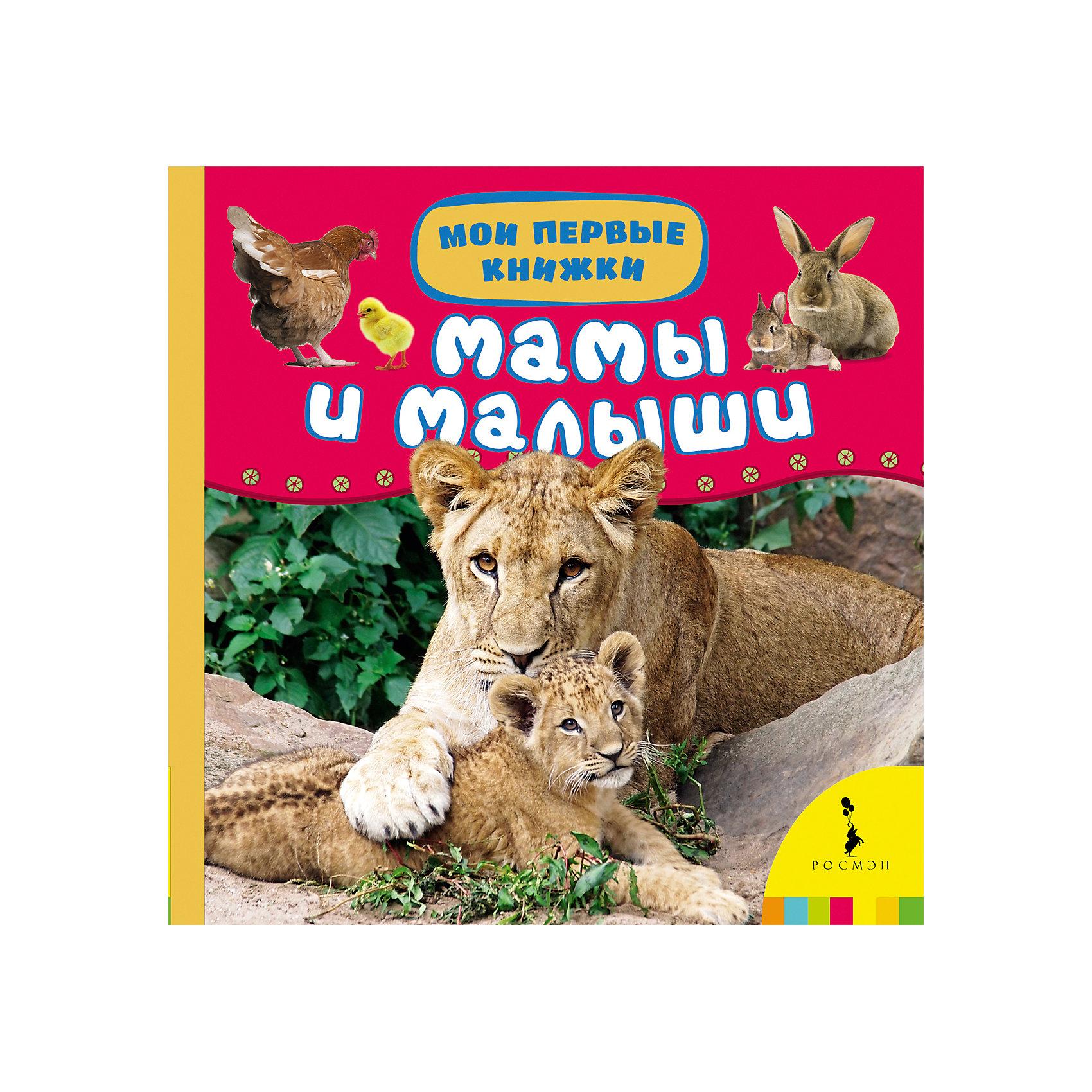 Мамы и малыши, Мои первые книжкиЭнциклопедии для малышей<br>Характеристики товара:<br><br>- цвет: разноцветный;<br>- материал: бумага;<br>- страниц: 14;<br>- формат: 17 х 17 см;<br>- обложка: картон;<br>- для чтения детям. <br><br>Издания серии Мои первые книжки - отличный способ занять ребенка! Эта красочная книга станет отличным подарком для родителей и малыша. Она содержит в себе полезную информацию и яркие картинки, которые так любят дети. Отличный способ привить малышу любовь к чтению и начать обучение!<br>Чтение и рассматривание картинок даже в юном возрасте помогает ребенку развивать память, концентрацию внимания и воображение. Издание произведено из качественных материалов, которые безопасны даже для самых маленьких.<br><br>Издание Мамы и малыши (Мои первые книжки) от компании Росмэн можно купить в нашем интернет-магазине.<br><br>Ширина мм: 165<br>Глубина мм: 165<br>Высота мм: 20<br>Вес г: 310<br>Возраст от месяцев: 0<br>Возраст до месяцев: 36<br>Пол: Унисекс<br>Возраст: Детский<br>SKU: 5110087