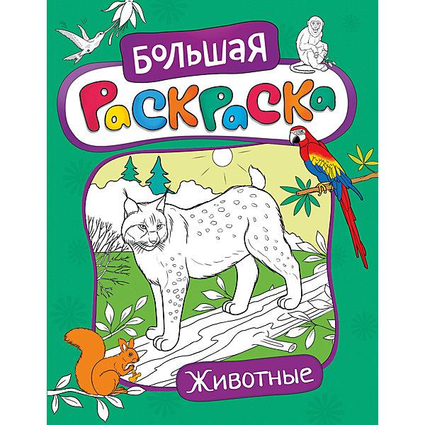 Большая раскраска. ЖивотныеРаскраски для детей<br>Характеристики товара:<br><br>- цвет: разноцветный;<br>- материал: бумага;<br>- страниц: 48;<br>- формат: 27.5 x 21 см;<br>- обложка: мягкая.<br><br>Эта раскраска станет отличным подарком для ребенка. Она помогает развить художественные навыки и интересно провести время. Особенность раскраски: картинок много, они очень красивые и на интересные детям темы.<br>Раскрашивание картинок даже в юном возрасте помогает ребенку развивать зрительную память, концентрацию внимания, мелкую моторику и цветовосприятие. Издание произведено из качественных материалов, которые безопасны даже для самых маленьких.<br><br>Издание Большая раскраска. Животные от компании Росмэн можно купить в нашем интернет-магазине.<br><br>Ширина мм: 275<br>Глубина мм: 210<br>Высота мм: 5<br>Вес г: 190<br>Возраст от месяцев: 60<br>Возраст до месяцев: 84<br>Пол: Унисекс<br>Возраст: Детский<br>SKU: 5110118