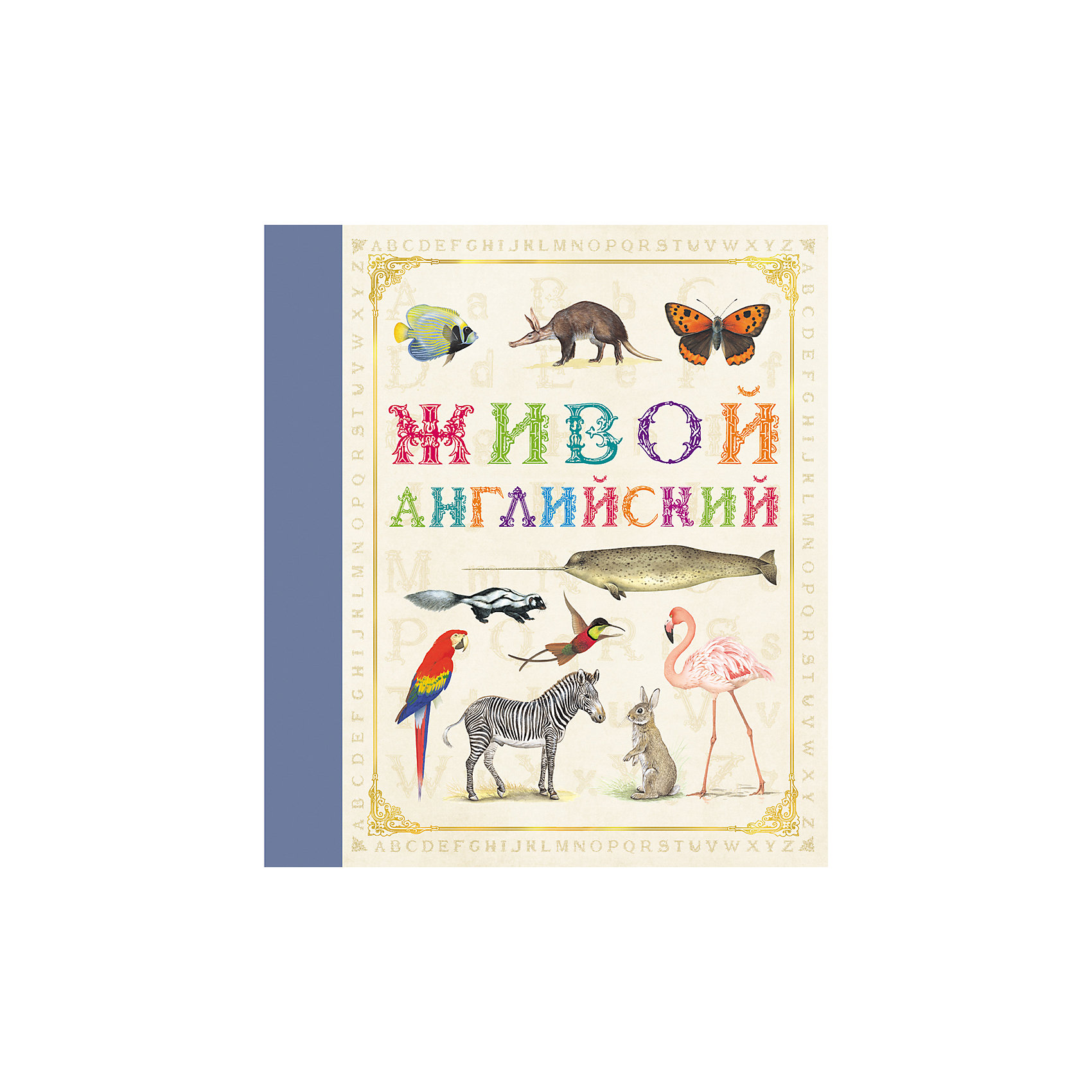 Живой английскийХарактеристики товара:<br><br>- цвет: разноцветный;<br>- материал: бумага;<br>- страниц: 32;<br>- формат: 24 х 21 см;<br>- обложка: твердая;<br>- цветные иллюстрации.<br><br>Эта интересная книга с иллюстрациями станет отличным подарком для ребенка. Она содержит в себе яркие картинки, которые помогут малышам познакомиться со многими животными, а также пояснения к ним. Плюс - малыш сможет легко выучить английский алфавит. В книге - море полезной информации для ребенка!<br>Чтение и рассматривание картинок помогает ребенку развивать зрительную память, концентрацию внимания и воображение. Издание произведено из качественных материалов, которые безопасны даже для самых маленьких.<br><br>Издание Живой английский от компании Росмэн можно купить в нашем интернет-магазине.<br><br>Ширина мм: 245<br>Глубина мм: 215<br>Высота мм: 7<br>Вес г: 265<br>Возраст от месяцев: 60<br>Возраст до месяцев: 84<br>Пол: Унисекс<br>Возраст: Детский<br>SKU: 5110167