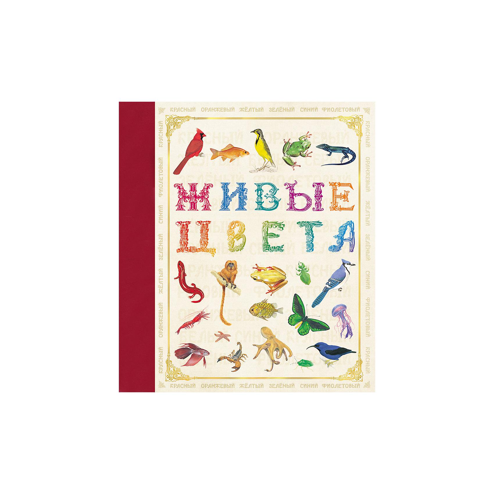Живые цветаХарактеристики товара:<br><br>- цвет: разноцветный;<br>- материал: бумага;<br>- страниц: 32;<br>- формат: 24 х 21 см;<br>- обложка: твердая;<br>- цветные иллюстрации.<br><br>Эта интересная книга с иллюстрациями станет отличным подарком для ребенка. Она содержит в себе яркие картинки, которые помогут малышам познакомиться со многими животными, а также пояснения к ним. Плюс - малыш сможет легко освоить разные цвета. В книге - море полезной информации для ребенка!<br>Чтение и рассматривание картинок помогает ребенку развивать зрительную память, концентрацию внимания и воображение. Издание произведено из качественных материалов, которые безопасны даже для самых маленьких.<br><br>Издание Живые цвета от компании Росмэн можно купить в нашем интернет-магазине.<br><br>Ширина мм: 245<br>Глубина мм: 215<br>Высота мм: 7<br>Вес г: 265<br>Возраст от месяцев: 60<br>Возраст до месяцев: 84<br>Пол: Унисекс<br>Возраст: Детский<br>SKU: 5110169