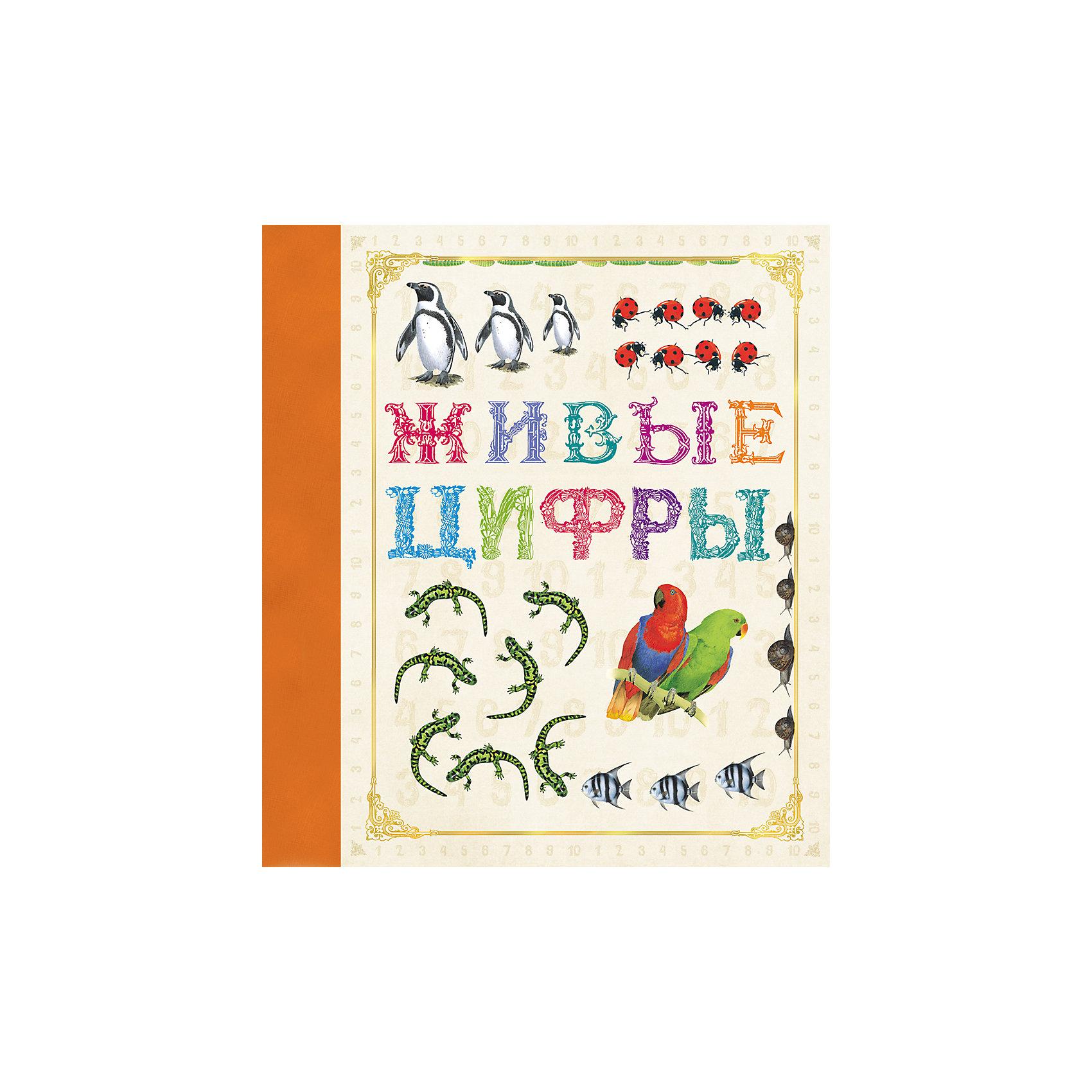 Живые цифрыХарактеристики товара:<br><br>- цвет: разноцветный;<br>- материал: бумага;<br>- страниц: 32;<br>- формат: 24 х 21 см;<br>- обложка: твердая;<br>- цветные иллюстрации.<br><br>Эта интересная книга с иллюстрациями станет отличным подарком для ребенка. Она содержит в себе яркие картинки, которые помогут малышам познакомиться со многими животными, а также пояснения к ним. Плюс - малыш сможет легко освоить цифры. В книге - море полезной информации для ребенка!<br>Чтение и рассматривание картинок помогает ребенку развивать зрительную память, концентрацию внимания и воображение. Издание произведено из качественных материалов, которые безопасны даже для самых маленьких.<br><br>Издание Живые цифры от компании Росмэн можно купить в нашем интернет-магазине.<br><br>Ширина мм: 245<br>Глубина мм: 210<br>Высота мм: 7<br>Вес г: 257<br>Возраст от месяцев: 60<br>Возраст до месяцев: 84<br>Пол: Унисекс<br>Возраст: Детский<br>SKU: 5110170