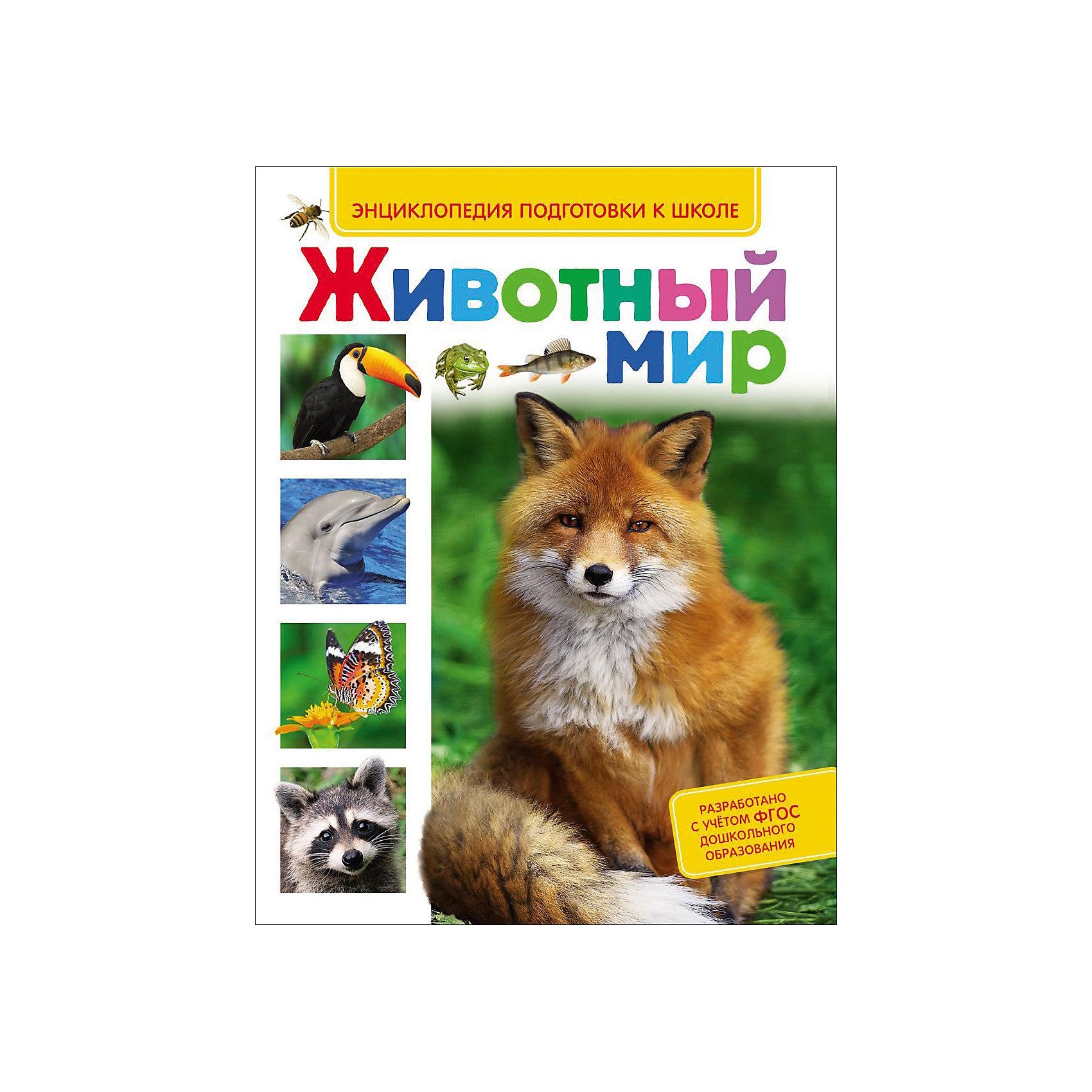 Энциклопедия подготовки к школе Животный мирХарактеристики товара:<br><br>- цвет: разноцветный;<br>- материал: бумага;<br>- страниц: 80;<br>- формат: 20 х 29 см;<br>- обложка: твердая;<br>- цветные иллюстрации.<br><br>Эта интересная книга с иллюстрациями станет отличным подарком для ребенка. Она содержит в себе яркие картинки, которые помогут малышам познакомиться со многими понятиями из окружающего мира, а также пояснения к ним. В книге - море полезной информации для ребенка!<br>Чтение и рассматривание картинок помогает ребенку развивать зрительную память, концентрацию внимания и воображение. Издание произведено из качественных материалов, которые безопасны даже для самых маленьких.<br><br>Издание Энциклопедия подготовки к школе Животный мир от компании Росмэн можно купить в нашем интернет-магазине.<br><br>Ширина мм: 262<br>Глубина мм: 200<br>Высота мм: 10<br>Вес г: 415<br>Возраст от месяцев: 60<br>Возраст до месяцев: 84<br>Пол: Унисекс<br>Возраст: Детский<br>SKU: 5110183