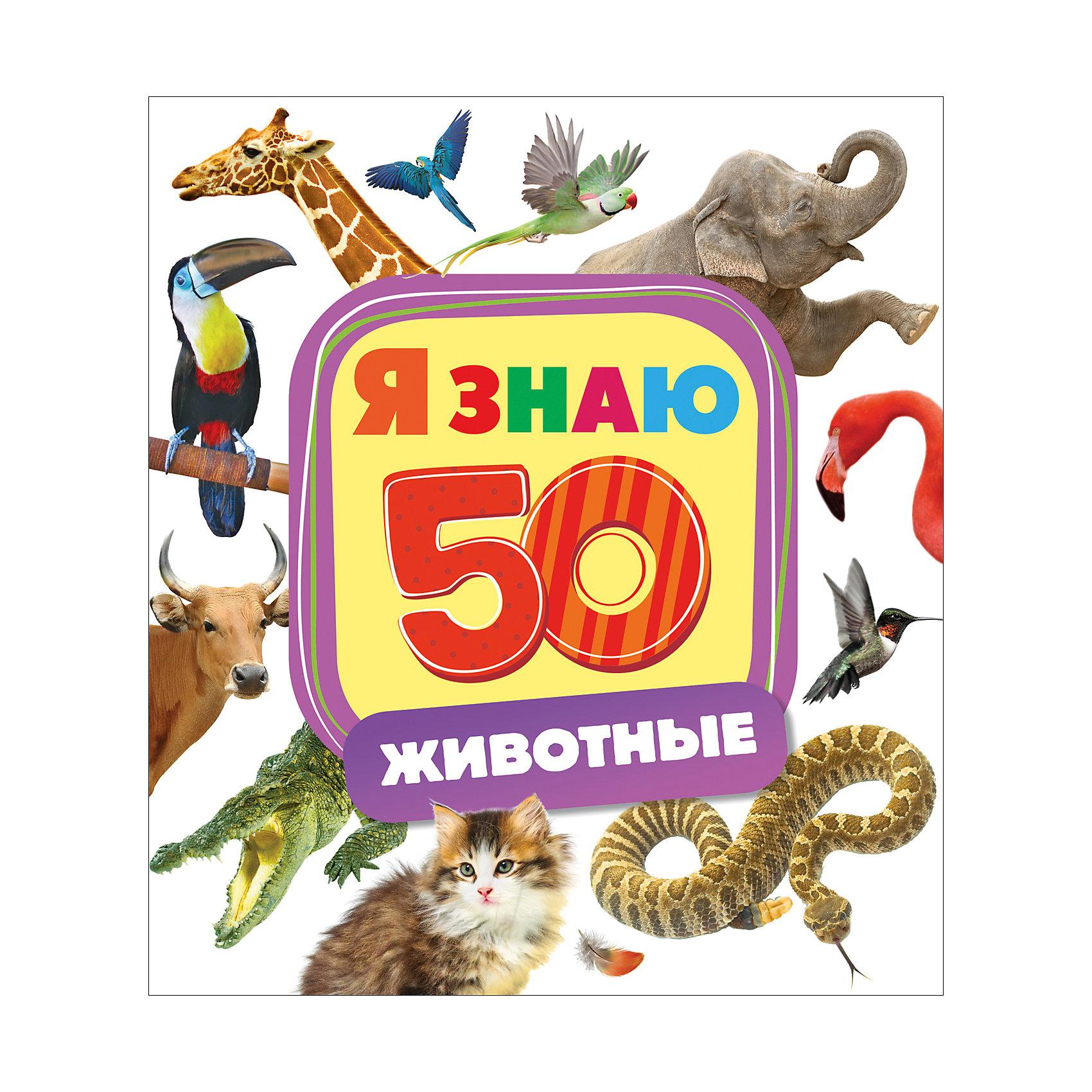 Я знаю ЖивотныеРосмэн<br>Характеристики товара:<br><br>- цвет: разноцветный;<br>- материал: бумага;<br>- страниц: 10;<br>- формат: 22 х 25 см;<br>- обложка: картон;<br>- развивающая. <br><br>Издания серии Я знаю - отличный способ занять ребенка! Эта красочная книга станет отличным подарком для родителей и малыша. Она содержит в себе интересные задания и яркие картинки, которые так любят дети. Отличный способ привить малышу любовь к занятиям и начать обучение! Методика такого обучения в игровой форме разработана опытными специалистами и опробована множеством родителей.<br>Чтение, выполнение простых заданий и рассматривание картинок помогает ребенку развивать память, концентрацию внимания и воображение. Издание произведено из качественных материалов, которые безопасны даже для самых маленьких.<br><br>Издание Я знаю Животные от компании Росмэн можно купить в нашем интернет-магазине.<br><br>Ширина мм: 250<br>Глубина мм: 225<br>Высота мм: 6<br>Вес г: 292<br>Возраст от месяцев: 0<br>Возраст до месяцев: 36<br>Пол: Унисекс<br>Возраст: Детский<br>SKU: 5110310
