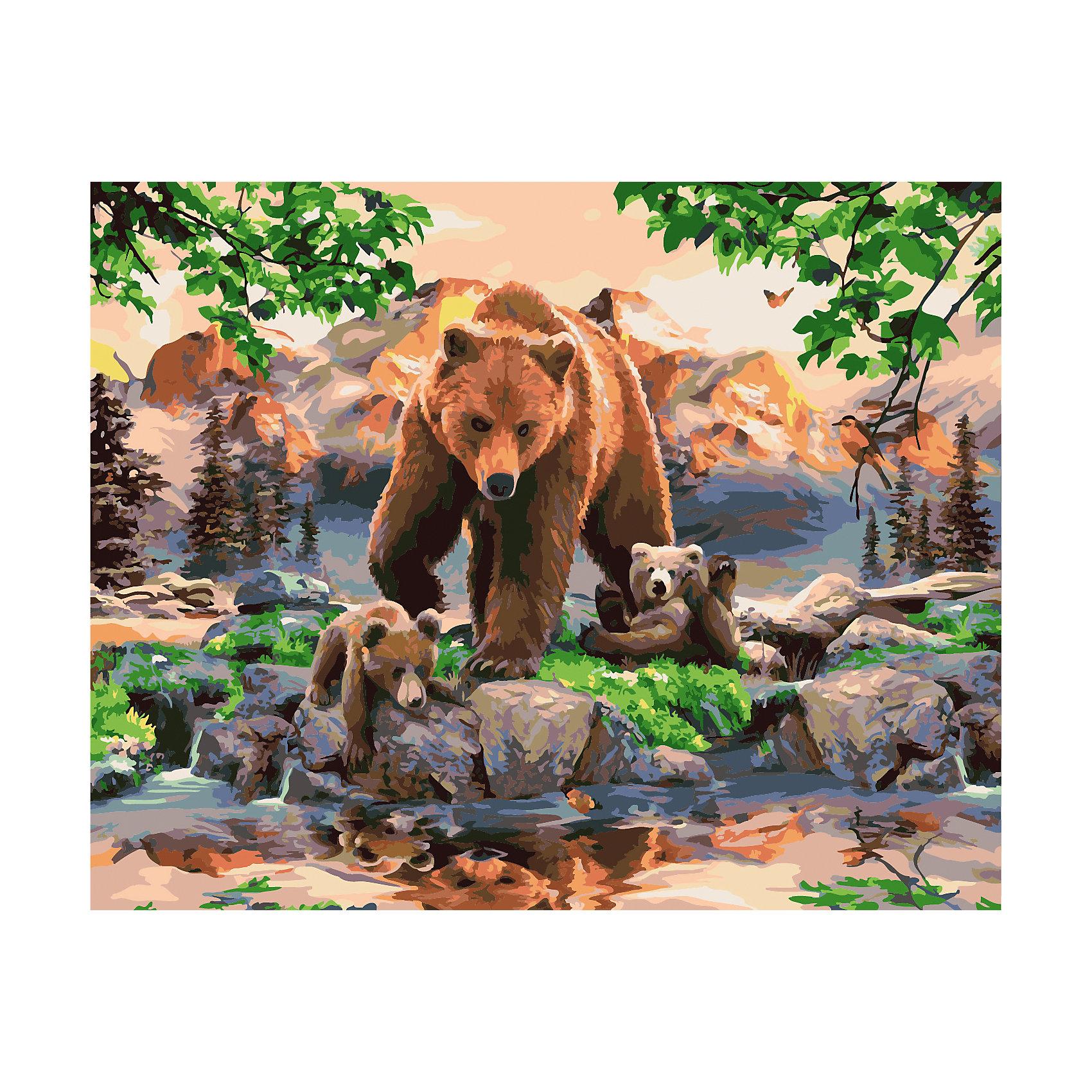 TUKZAR Роспись по номерам Медведь 40*50 см наборы для рисования цветной картины по номерам бурый медведь