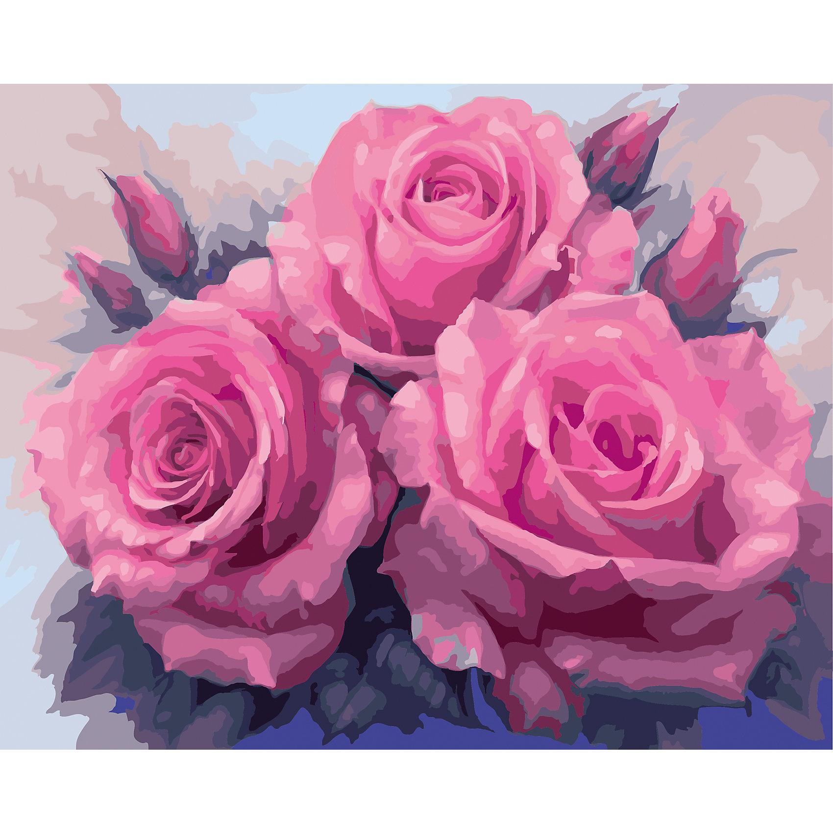 TUKZAR Роспись по номерам Розы 40*50 см наборы для рисования цветной картины по номерам белые розы