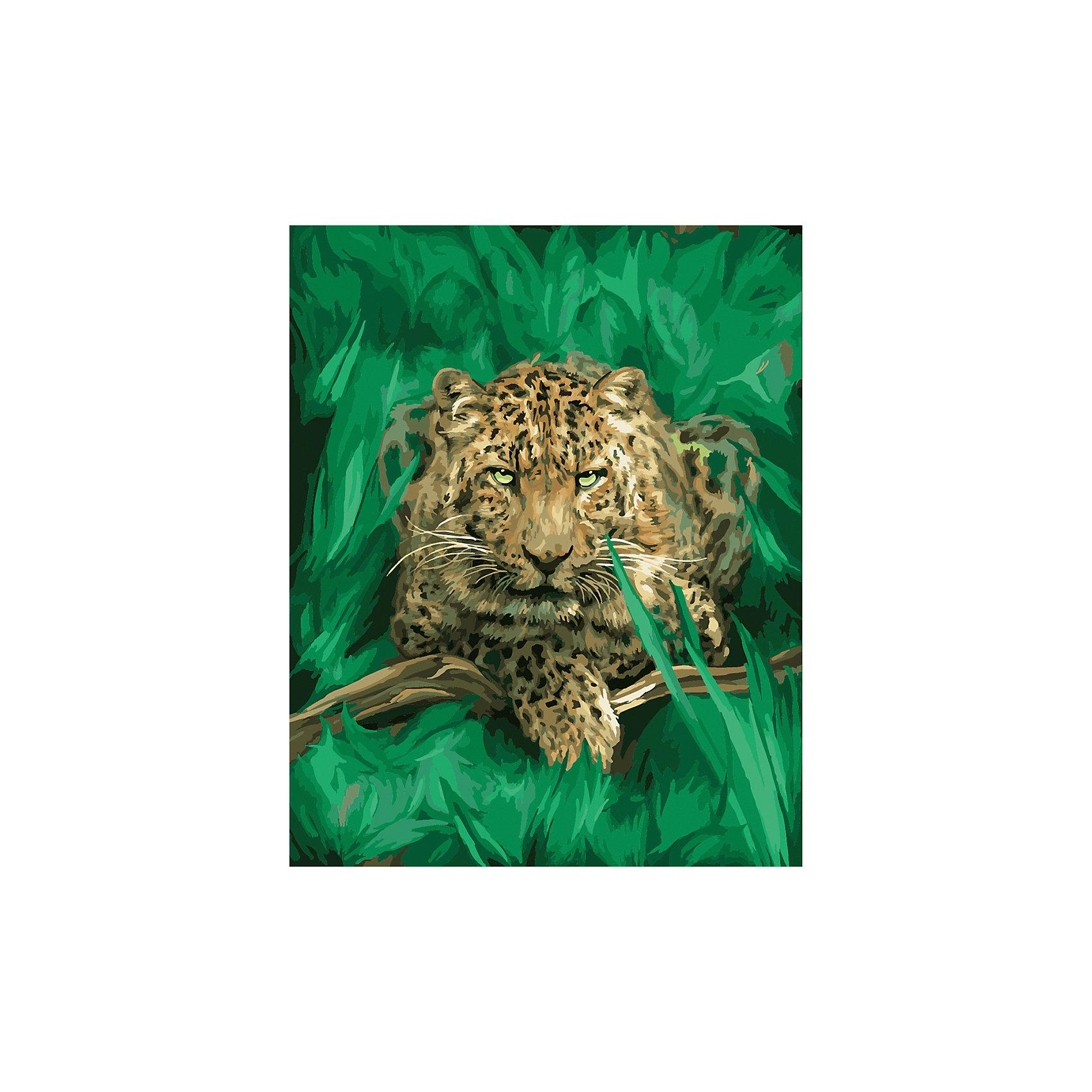 TUKZAR Роспись по номерам Леопард в траве 40*50 см наборы для рисования цветной картины по номерам пятнистый леопард