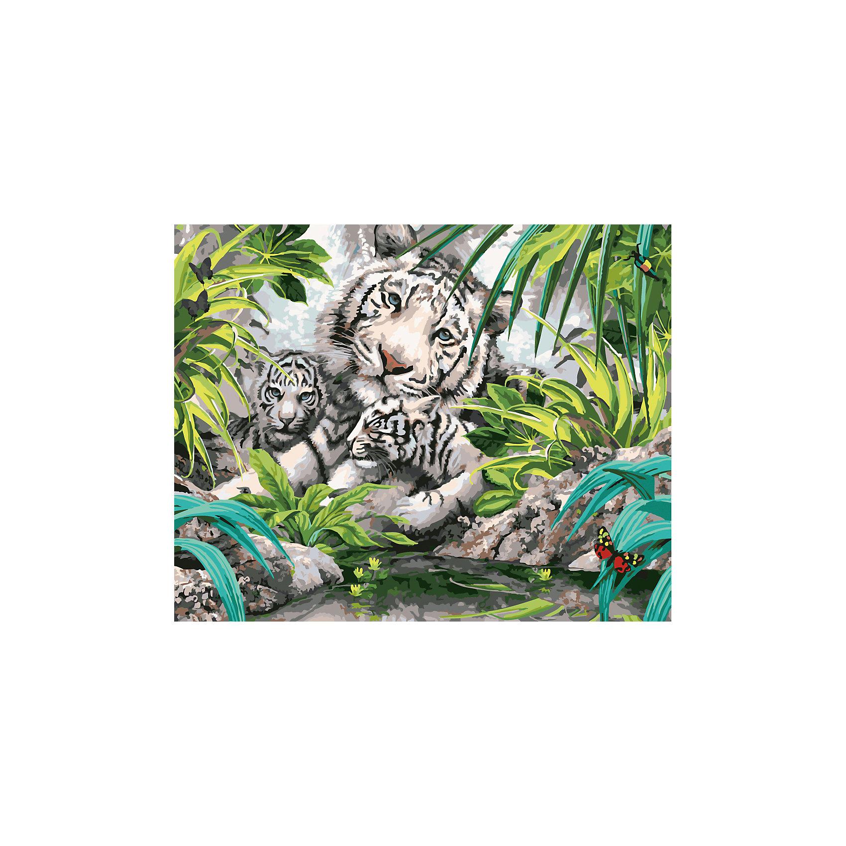 Роспись по номерам Бенгальские тигры 40*50 смХарактеристики товара:<br><br>- цвет: разноцветный;<br>- материал: бумага, акрил;<br>- комплектация: холст на подрамнике, кисти, краски, контрольный рисунок, инструкция;<br>- размер картины: 40х50 см;<br>- размер упаковки: 42х52х3 см.<br><br>Такой комплект для рисования станет отличным подарком и для ребенка, и для взрослого. Он помогает развить художественные навыки, поверить в свои силы, а в итоге работы получается произведение искусства, которое может украсить интерьер!<br>Основа набора - это полотно на подрамнике размером 40 на 50 сантиметров, на которое нанесены контуры рисунка, а участки пронумерованы. Каждому номеру соответствует баночка с краской определенного оттенка. Для удобного нанесения акриловых красок на водной основе в наборе есть три разные кисти, с их помощью даже мелкие детали можно аккуратно и красиво прорисовать. Чтобы контролировать процесс, можно сверяться с контрольным рисунком, на котором изображена готовая картина.<br>Роспись по такой схеме помогает развивать зрительную память, концентрацию внимания, мелкую моторику и цветовосприятие.<br><br>Роспись по номерам Бенгальские тигры 40*50 см можно купить в нашем интернет-магазине.<br><br>Ширина мм: 420<br>Глубина мм: 520<br>Высота мм: 50<br>Вес г: 900<br>Возраст от месяцев: 36<br>Возраст до месяцев: 2147483647<br>Пол: Унисекс<br>Возраст: Детский<br>SKU: 5117407