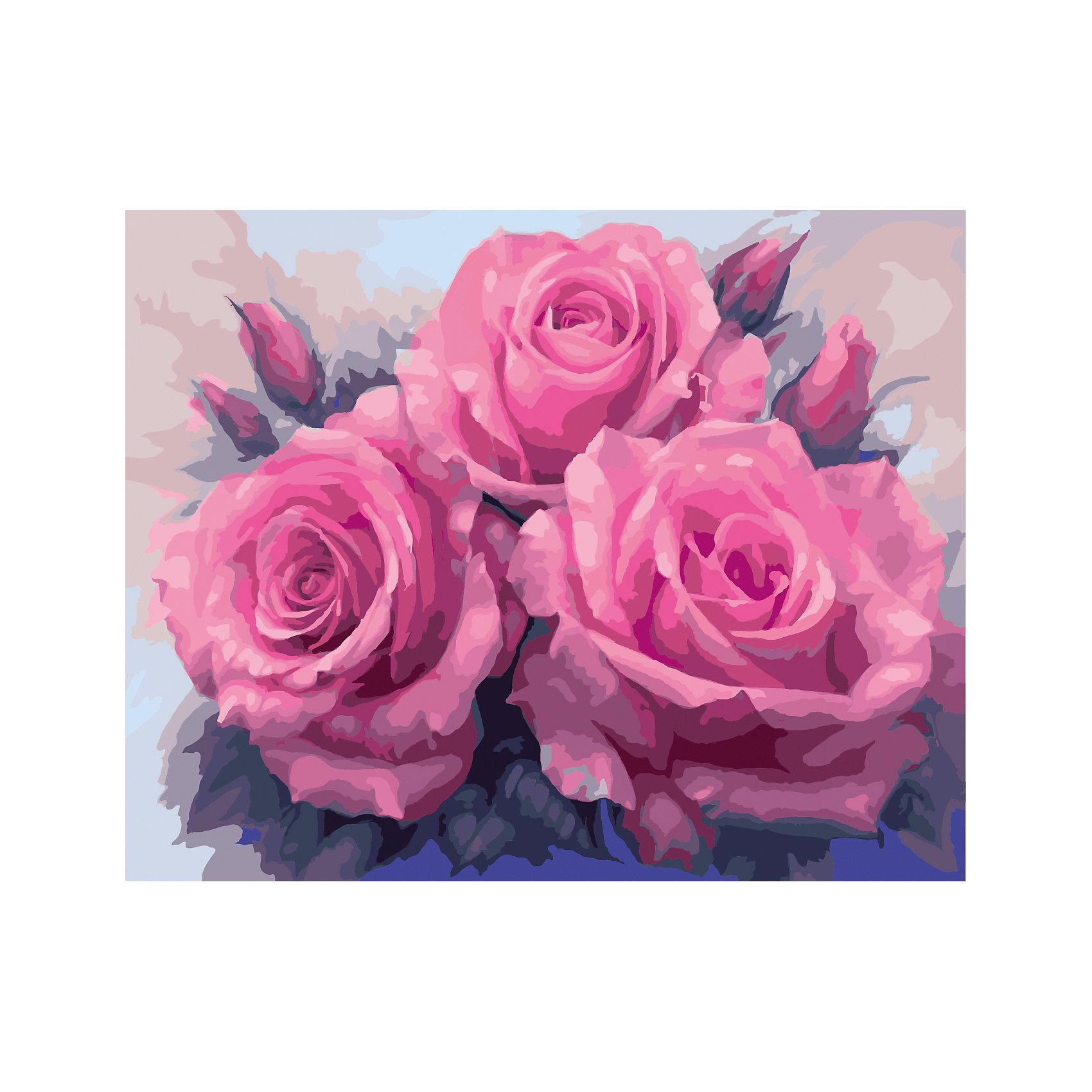 TUKZAR Роспись по номерам Нежно-розовые розы 40*50 см наборы для рисования цветной картины по номерам белые розы