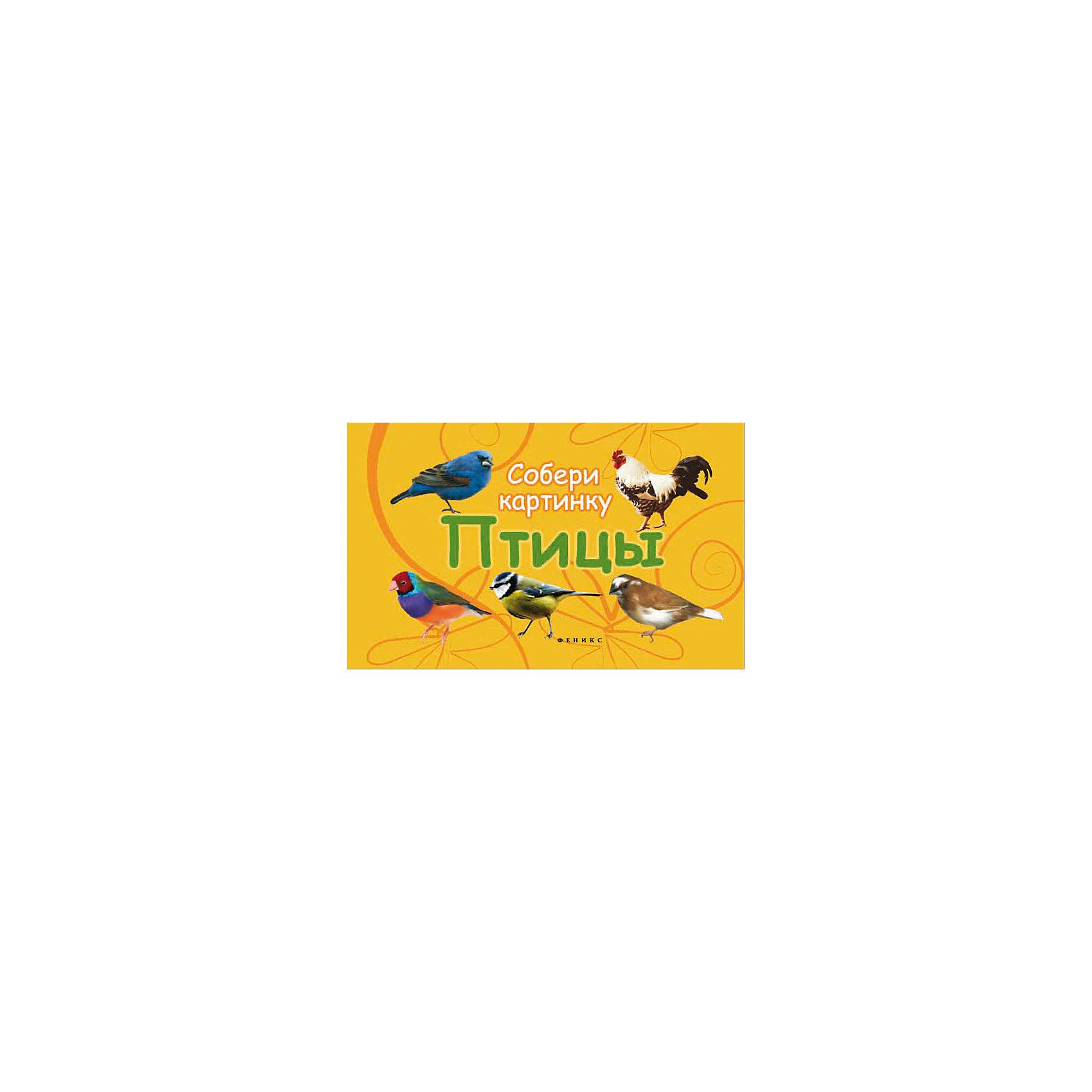 Fenix Птицы: собери картинку fenix удобная спортивная фара