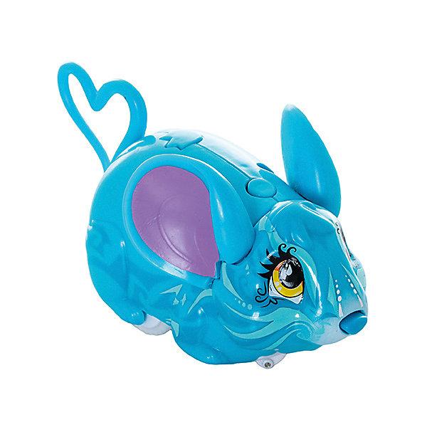 Мышка-циркач Андора, Amazing ZhusИнтерактивные животные<br>Характеристики товара:<br><br>- цвет: голубой;<br>- материал: пластик;<br>- вес : 220 г;<br>- три режима работы;<br>- размер упаковки: 16 x 10 x 7 см;<br>- умеет издавать забавные звуки, изучать пространство.<br><br>Такая игрушка в виде симпатичной мышки поможет ребенку весело проводить время - она умеет издавать забавные звуки и активно изучать пространство, используя нос как радар. Это выглядит очень забавно! <br>Мышка способна помогать всестороннему развитию ребенка: развивать тактильное восприятие, мелкую моторику, воображение, внимание и логику. Изделие произведено из качественных материалов, безопасных для ребенка. Набор станет отличным подарком детям!<br><br>Игрушку Мышка-циркач Андора от бренда Amazing Zhus можно купить в нашем интернет-магазине.<br>Ширина мм: 160; Глубина мм: 130; Высота мм: 70; Вес г: 220; Возраст от месяцев: 36; Возраст до месяцев: 2147483647; Пол: Женский; Возраст: Детский; SKU: 5124481;
