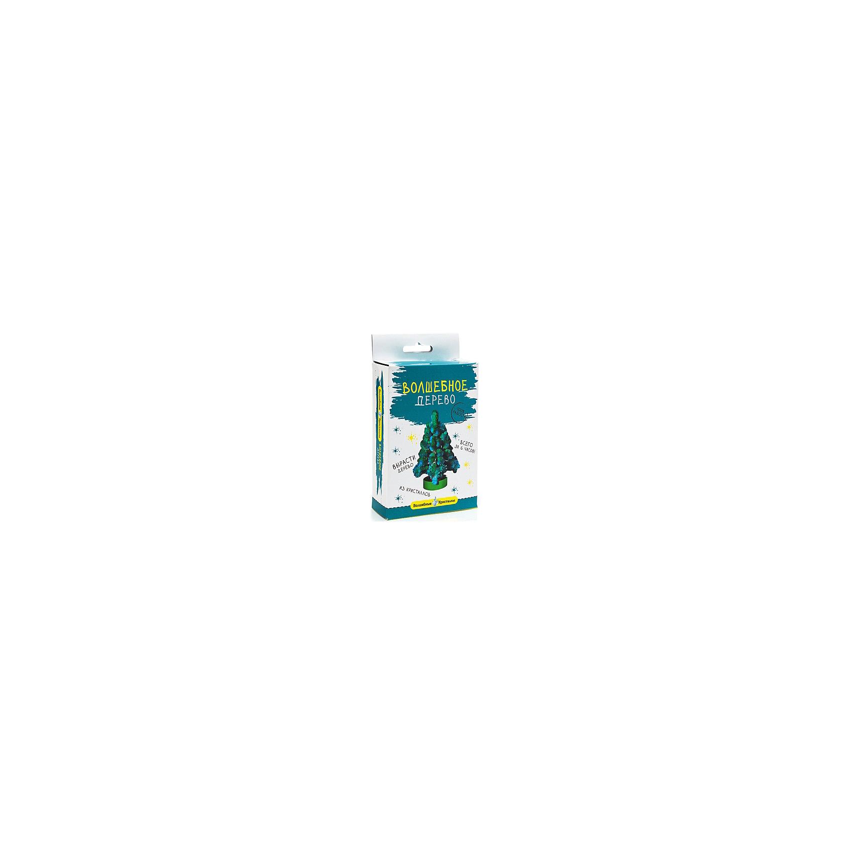 Волшебные кристаллы Синяя елочкаВыращивание кристаллов<br>Волшебные кристаллы Синяя елочка, Бумбарам.<br><br>Характеристики:<br><br>• подходит для первых химических опытов<br>• прост в применении<br>• яркий цвет<br>• развивает внимательность и усидчивость<br>• в комплекте: основа, подставка, пакетик с реактивом, инструкция<br>• размер: 3х10х17 см<br>• вес: 50 грамм<br>• готовую поделку рекомендуется покрыть лаком для волос<br><br>Что делать если хочется украсить комнату красивой ёлочкой? Конечно же, вырастить яркое дерево из волшебных кристаллов! Набор Синяя ёлочка поможет вам справиться с этой задачей. Он очень прост в использовании: достаточно лишь установить картонную основу на подставку и добавить специальный раствор. Всего через 6 часов перед вашими глазами предстанет яркая пушистая елочка, которая долго будет радовать вас своей красотой!<br><br>Волшебные кристаллы Синяя елочка, Бумбарам вы можете купить в нашем интернет-магазине.<br><br>Ширина мм: 170<br>Глубина мм: 100<br>Высота мм: 30<br>Вес г: 50<br>Возраст от месяцев: 72<br>Возраст до месяцев: 144<br>Пол: Женский<br>Возраст: Детский<br>SKU: 5124692