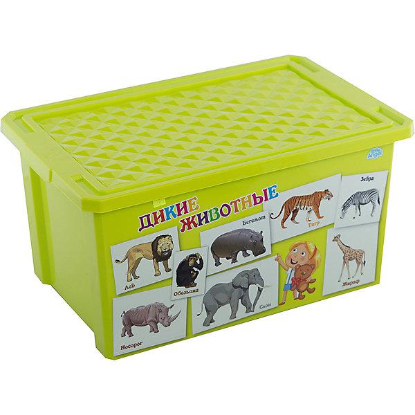 Ящик для хранения игрушек X-BOX Обучайка Животные 57л, Little Angel, салатовыйЯщики для игрушек<br>Характеристики ящика для хранения игрушек X-BOX Обучайка Животные 57л, Little Angel, салатовый:<br><br>- возраст: от 3 лет<br>- пол: для мальчиков и девочек<br>- цвет: салатовый.<br>- материал: полипропилен.<br>- размер упаковки: 79 * 59 * 44 см.<br>- размер ящика: 61 * 40.5 * 33 см.<br>- вместимость: 57 л.<br>- вес: 1.91 кг.<br>- бренд: Little Angel<br>- страна обладатель бренда: Россия.<br><br>Детский ящик для хранения игрушек X-Box Обучайка от производителя Little Angel - это очень легкая и удобная в эксплуатации емкость яркого салатового цвета. На одной стороне этого бокса имеется красочное изображение в виде иллюстрированных карточек с буквами которые помогут Вашему малышу быстрее запомнить буквы в игровой форме.<br><br>Детский ящик для хранения игрушек X-Box Обучайка Животные торговой  марки Little Angel можно купить в нашем интернет-магазине.<br><br>Ширина мм: 610<br>Глубина мм: 405<br>Высота мм: 330<br>Вес г: 2140<br>Возраст от месяцев: 24<br>Возраст до месяцев: 72<br>Пол: Унисекс<br>Возраст: Детский<br>SKU: 5136379