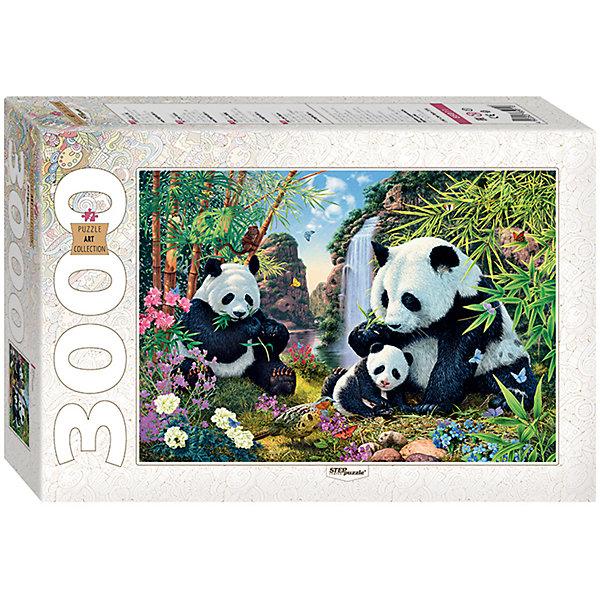 Пазл Панды, 3000 деталей, Step PuzzleПазлы классические<br>Характеристики товара:<br><br>- цвет: разноцветный;<br>- материал: картон;<br>- деталей: 3000;<br>- высокая точность подгонки элементов;<br>- отличное качество печати;<br>- упаковка: коробка.<br><br>Собирать пазлы любят и дети, и взрослые! Это занятие может не только позволять весело проводить время, но и помогать всестороннему развитию ребенка. Изделие представляет собой детали, из которых нужно собрать очень красивую картинку. Все детали отлично проработаны, готовое изображение можно даже зафиксировать на бумаге и украсить им интерьер!<br>Собирание пазлов поможет формированию разных навыков, оно помогает развить тактильное восприятие, мелкую моторику, воображение, внимание и логику. Изделие произведено из качественных материалов, безопасных для ребенка. Набор станет отличным подарком детям!<br><br>Пазл Панды, 3000 деталей, от бренда Step Puzzle можно купить в нашем интернет-магазине.<br><br>Ширина мм: 400<br>Глубина мм: 270<br>Высота мм: 85<br>Вес г: 2750<br>Возраст от месяцев: 84<br>Возраст до месяцев: 180<br>Пол: Унисекс<br>Возраст: Детский<br>SKU: 5138185