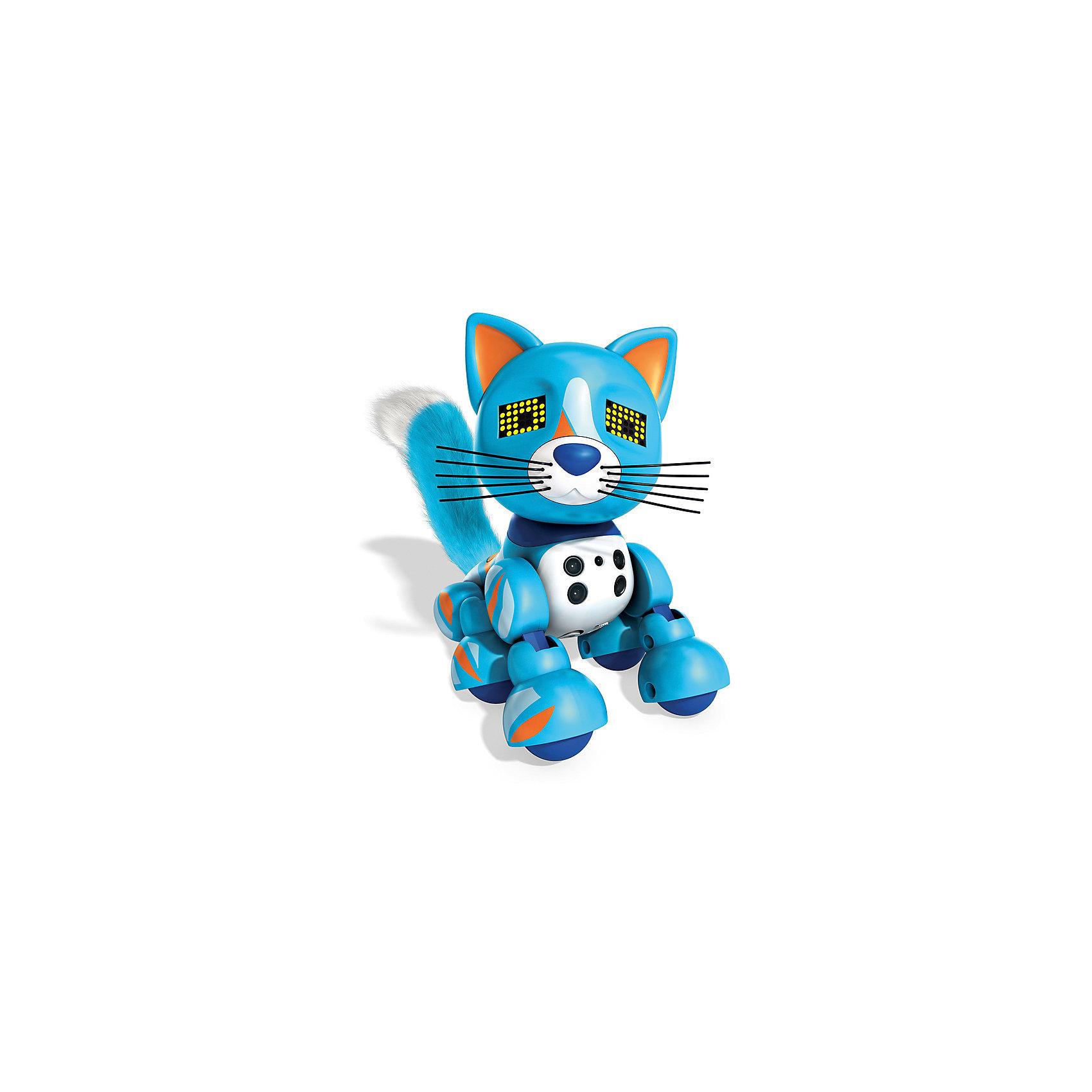 Интерактивный Котёнок, голубой, ZoomerХарактеристики товара:<br><br>- цвет: голубой;<br>- материал: пластик, текстиль;<br>- батарейки: 3xAG13/LR44, в комплекте;<br>- размер упаковки: 20x18x14 см;<br>- вес: 660 г;<br>- умеет реагировать на прикосновение и движение, играет в различные игры, произносит звуки.<br><br>Такая игрушка в виде котенка поможет ребенку весело проводить время - он умеет реагировать на прикосновение и движение, играет в различные игры, произносит звуки. Это выглядит очень забавно! Игрушка реагирует на движения благодаря сенсорам и ИК-порту, также у неё можно активировать подсветку глаз.<br>Этот котенок способен помогать всестороннему развитию ребенка: развивать тактильное восприятие, мелкую моторику, воображение, внимание и логику. Изделие произведено из качественных проверенных материалов, безопасных для малышей. Ёж станет отличным подарком детям!<br><br>Игрушку Интерактивный Котёнок, голубой, от бренда Zoomer можно купить в нашем интернет-магазине.<br><br>Ширина мм: 215<br>Глубина мм: 180<br>Высота мм: 135<br>Вес г: 532<br>Возраст от месяцев: 36<br>Возраст до месяцев: 2147483647<br>Пол: Унисекс<br>Возраст: Детский<br>SKU: 5140254