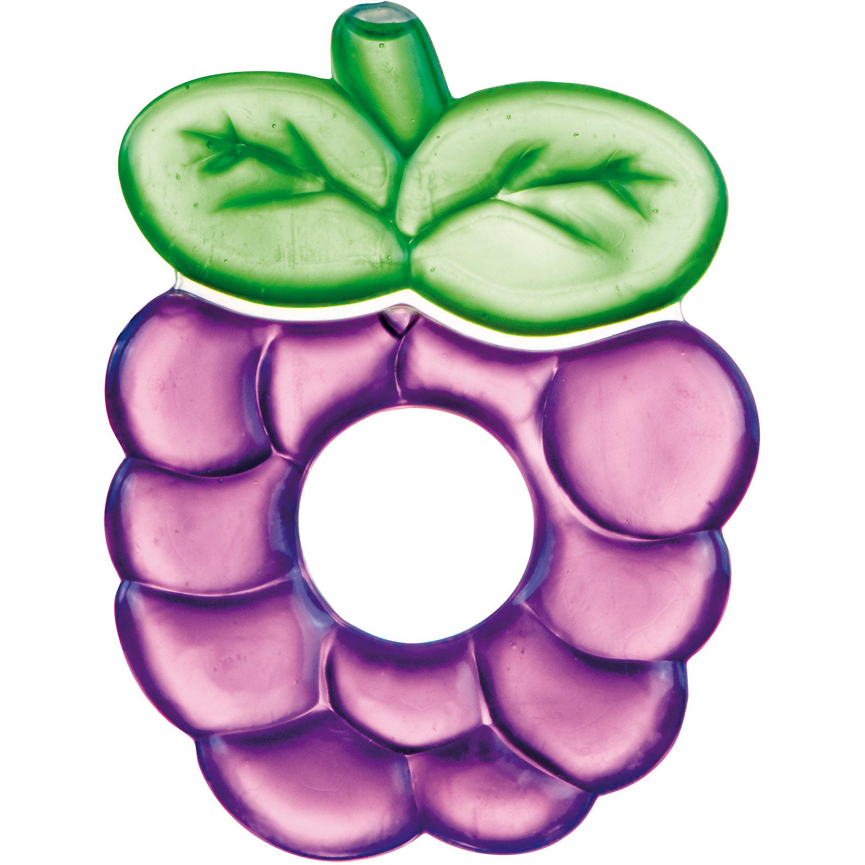 Прорезыватель водный охлаждающий Ягодка 0+ Fruits, Canpol Babies, фиолетовыйПрорезыватели<br>Прорезыватель водный охлаждающий Ягодка 0+ Fruits, Canpol Babies (Канпол Беби), фиолетовый.<br><br>Характеристики:<br>• облегчает боль и снимает зуд<br>• изготовлен из безопасных материалов<br>• наполнен дистиллированной водой<br>• материал: нетоксичный пластик, вода<br>• размер упаковки: 18,5х11,5х1 см<br>• цвет: фиолетовый<br><br>Прорезыватель Ягодка снимет зуд и сведет к минимуму неприятные ощущения в деснах при прорезывании зубов. Для этого нужно положить игрушку в холодильник на несколько минут. Удобная ручка позволит ребенку держать прорезыватель самостоятельно. Яркая расцветка <br>привлечет внимание ребенка и он с удовольствием воспользуется волшебным помощником!<br><br>Прорезыватель водный охлаждающий Ягодка 0+ Fruits, Canpol Babies (Канпол Беби), фиолетовый можно купить в нашем интернет-магазине.<br><br>Ширина мм: 115<br>Глубина мм: 10<br>Высота мм: 185<br>Вес г: 470<br>Возраст от месяцев: 0<br>Возраст до месяцев: 12<br>Пол: Унисекс<br>Возраст: Детский<br>SKU: 5156703