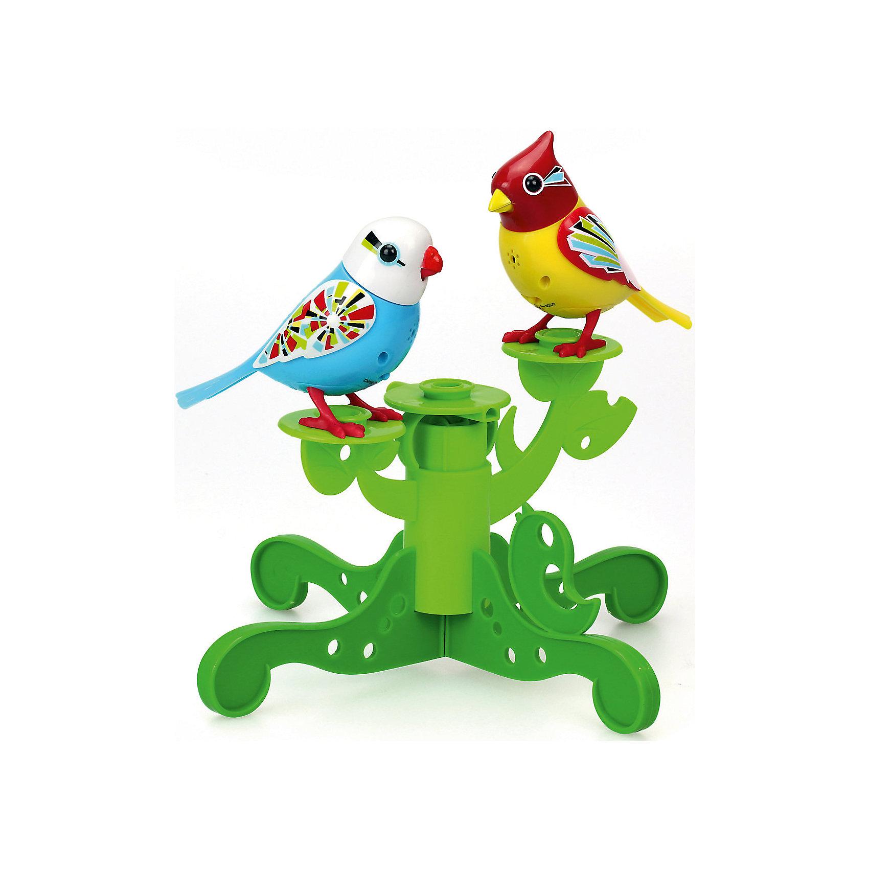 Две птички с деревом, голубая и жёлтая, DigiBirdsИнтерактивные животные<br>Характеристики товара:<br><br>- цвет: голубой, желтый;<br>- материал: пластик, металл;<br>- батарейки: 3xAG13/LR44, в комплекте;<br>- размер упаковки: 25х25х6 см;<br>- умеют петь, двигать крыльями, открывать клюв.<br><br>Такая игрушка в виде птичек на дереве поможет ребенку весело проводить время - каждая умеет петь, двигать крыльями, открывать клюв. Это выглядит очень забавно! Игрушка реагирует на звук от специального свистка, который входит в комплект, или на дуновение. Также можно приобрести другие игрушки из этой серии - тогда они будут петь хором!<br>Игрушка способна помогать всестороннему развитию ребенка: развивать тактильное восприятие, мелкую моторику, воображение, внимание и логику. Изделие произведено из качественных материалов, безопасных для ребенка. Набор станет отличным подарком детям!<br><br>Игрушку Две птички с деревом, голубая и жёлтая от бренда DigiBirds можно купить в нашем интернет-магазине.<br><br>Ширина мм: 57<br>Глубина мм: 248<br>Высота мм: 248<br>Вес г: 330<br>Возраст от месяцев: 36<br>Возраст до месяцев: 2147483647<br>Пол: Женский<br>Возраст: Детский<br>SKU: 5156841