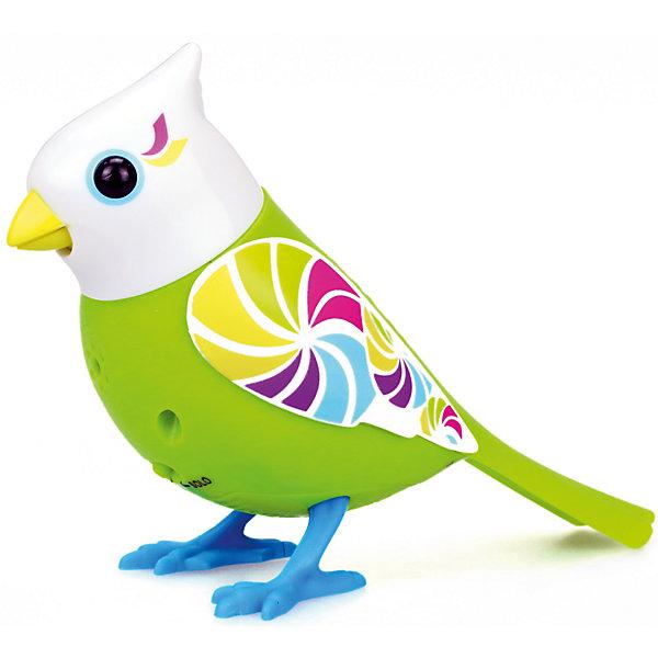 Птичка с домиком, салатовая, DigiBirdsИнтерактивные животные<br>Характеристики товара:<br><br>- цвет: салатовый;<br>- материал: пластик, металл;<br>- батарейки: 3xAG13/LR44, в комплекте;<br>- размер упаковки: 31х25х8 см;<br>- умеет петь, двигать крыльями, открывать клюв.<br><br>Такая игрушка в виде птички поможет ребенку весело проводить время - она умеет петь, двигать крыльями, открывать клюв. Это выглядит очень забавно! Игрушка реагирует на звук от специального свистка, который входит в комплект, или на дуновение. Также можно приобрести другие игрушки из этой серии - тогда они будут петь хором!<br>Птичка способна помогать всестороннему развитию ребенка: развивать тактильное восприятие, мелкую моторику, воображение, внимание и логику. Изделие произведено из качественных материалов, безопасных для ребенка. Набор станет отличным подарком детям!<br><br>Игрушку Птичка с домиком, салатовая от бренда DigiBirds можно купить в нашем интернет-магазине.<br>Ширина мм: 81; Глубина мм: 248; Высота мм: 305; Вес г: 533; Возраст от месяцев: 36; Возраст до месяцев: 2147483647; Пол: Унисекс; Возраст: Детский; SKU: 5156842;