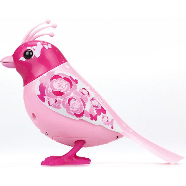Птичка с домиком, розовая, DigiBirdsИнтерактивные животные<br>Характеристики товара:<br><br>- цвет: розовый;<br>- материал: пластик, металл;<br>- батарейки: 3xAG13/LR44, в комплекте;<br>- размер упаковки: 31х25х8 см;<br>- умеет петь, двигать крыльями, открывать клюв.<br><br>Такая игрушка в виде птички поможет ребенку весело проводить время - она умеет петь, двигать крыльями, открывать клюв. Это выглядит очень забавно! Игрушка реагирует на звук от специального свистка, который входит в комплект, или на дуновение. Также можно приобрести другие игрушки из этой серии - тогда они будут петь хором!<br>Птичка способна помогать всестороннему развитию ребенка: развивать тактильное восприятие, мелкую моторику, воображение, внимание и логику. Изделие произведено из качественных материалов, безопасных для ребенка. Набор станет отличным подарком детям!<br><br>Игрушку Птичка с домиком, розовая от бренда DigiBirds можно купить в нашем интернет-магазине.<br><br>Ширина мм: 81<br>Глубина мм: 248<br>Высота мм: 305<br>Вес г: 533<br>Возраст от месяцев: 36<br>Возраст до месяцев: 2147483647<br>Пол: Женский<br>Возраст: Детский<br>SKU: 5156843