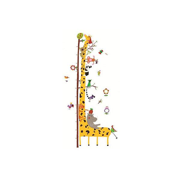 Ростомер Друзья с Амазонки, DJECOДетские предметы интерьера<br>Ростомер Друзья с Амазонки, DJECO<br><br>Характеристики:<br><br>• Материал: пленка<br>• Высота ростомера: 135 см<br>• Максимальная высота роста: 160 см<br>• В комплекте: ростомер, 31 наклейка<br><br>С таким ростомером вы всегда сможете знать рост вашего малыша и следить за темпом с помощью наклеек. Такой красивый ростомер идеально впишется в любой интерьер комнаты и порадует ребенка своей красочностью. Он легко клеится на стену и не выцветает со временем. На ростомере изображены веселые зверята, обитающие в джунглях.<br><br>Ростомер Друзья с Амазонки, DJECO можно купить в нашем интернет-магазине.<br>Ширина мм: 620; Глубина мм: 320; Высота мм: 10; Вес г: 420; Возраст от месяцев: 12; Возраст до месяцев: 1188; Пол: Унисекс; Возраст: Детский; SKU: 5163412;