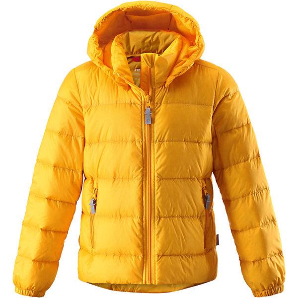 Куртка Medow для девочки ReimaОдежда<br>Характеристики товара:<br><br>• цвет: желтый<br>• состав: 100% полиэстер, полиуретановое покрытие<br>• температурный режим: от 0°С до -7°С<br>• утеплитель: 80% утиный пух, 20% утиное перо<br>• водоотталкивающий и дышащий материал<br>• легкая степень утепления<br>• эластичные манжеты<br>• застежка: молния<br>• удлиненная спинка<br>• отстегивающийся капюшон<br>• карманы на молнии<br>• высокий воротник<br>• логотип<br>• комфортная посадка<br>• светоотражающие детали<br>• страна производства: Китай<br>• страна бренда: Финляндия<br><br>Верхняя одежда для детей может быть модной и комфортной одновременно! Демисезонная куртка поможет обеспечить ребенку комфорт и тепло. Она отлично смотрится с различной одеждой и обувью. Изделие удобно сидит и модно выглядит. Материал - прочный, хорошо подходящий для межсезонья. Стильный дизайн разрабатывался специально для детей.<br><br>Одежда и обувь от финского бренда Reima пользуется популярностью во многих странах. Эти изделия стильные, качественные и удобные. Для производства продукции используются только безопасные, проверенные материалы и фурнитура. Порадуйте ребенка модными и красивыми вещами от Reima! <br><br>Куртку Medow для девочки от финского бренда Reima (Рейма) можно купить в нашем интернет-магазине.<br><br>Ширина мм: 356<br>Глубина мм: 10<br>Высота мм: 245<br>Вес г: 519<br>Цвет: желтый<br>Возраст от месяцев: 24<br>Возраст до месяцев: 36<br>Пол: Женский<br>Возраст: Детский<br>Размер: 98,110,122,164,152,140,128<br>SKU: 5215902