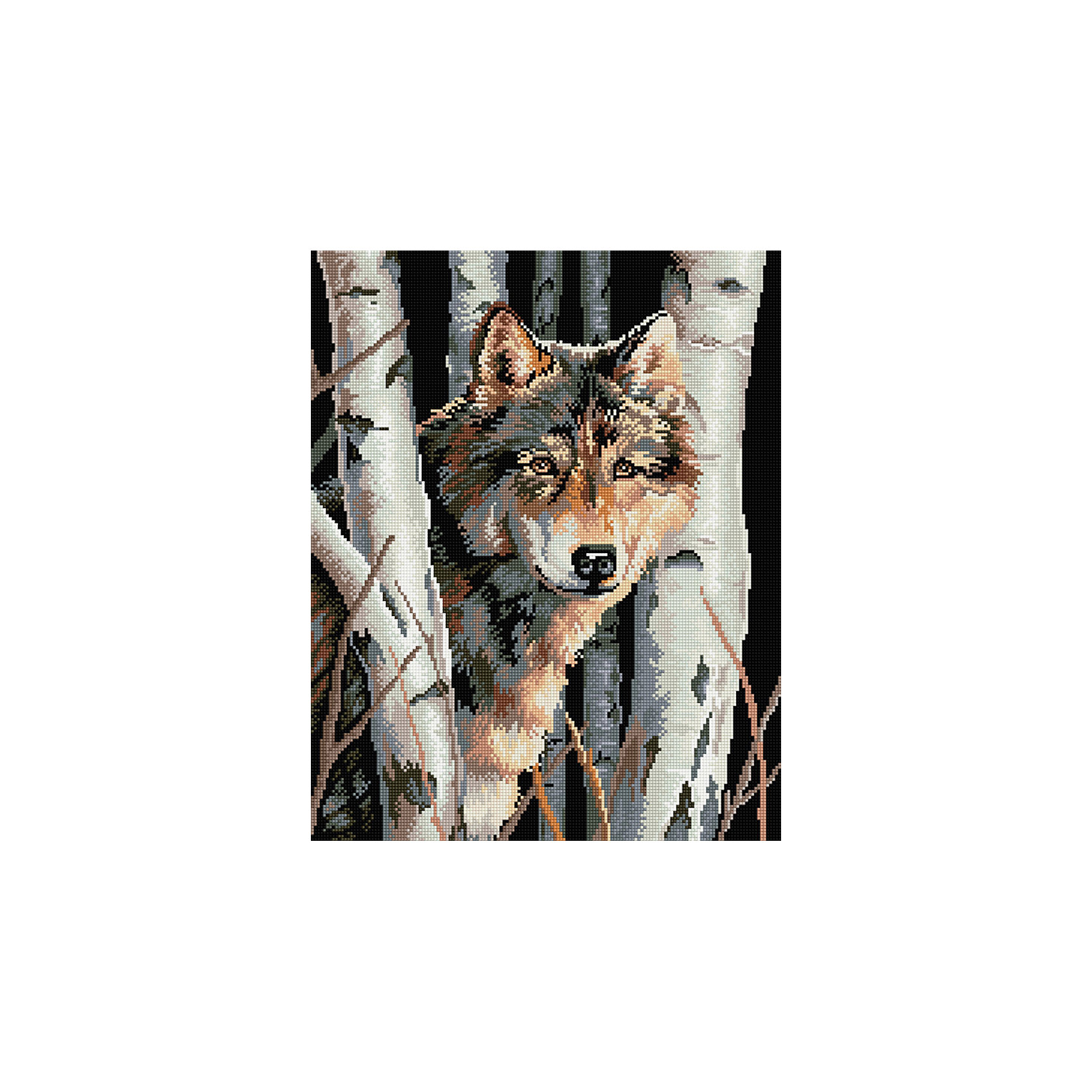 Алмазная мозаика Волк 40*50 смПоследняя цена<br>Характеристики:<br><br>• Предназначение: для занятий творчеством в технике алмазной живописи<br>• Тематика: Животные<br>• Пол: для девочек<br>• Уровень сложности: средний<br>• Материал: дерево, бумага, акрил, пластик<br>• Цвет: белый, серый, черный, оттенки коричневого и др.<br>• Количество цветов: 24<br>• Комплектация: холст на подрамнике, стразы, пинцет, карандаш для камней, клей, лоток для камней, инструкция<br>• Размеры (Ш*Д): 40*50 см<br>• Тип выкладки камней: сплошное заполнение рисунка<br>• Стразы квадратной формы <br>• Вес: 900 г <br>• Упаковка: картонная коробка<br><br>Алмазная мозаика Волк 40*50 см – это набор для создания картины в технике алмазной живописи. Набор для творчества включает в себя холст, на который нанесена схема рисунка, комплекта разноцветных страз квадратной формы, подрамника и инструментов для выкладки узора. Все использованные в наборе материалы экологичные и нетоксичные. Картина выполняется в технике сплошного заполнения декоративными элементами поверхности холста, что обеспечивает высокую реалистичность рисунка. На схеме изображен волк среди берез. <br>Готовые наборы для алмазной мозаики – это оптимальный вариант для любителей рукоделия, так как в них предусмотрены все материалы в требуемом для изготовления картины количестве. Занятия алмазной живописью позволят развивать навыки чтения схем, выполнения заданий по образцу, будут способствовать внимательности, терпению и развитию мелкой моторики. <br>Наборы алмазной мозаики могут быть преподнесены в качестве подарка не только девочкам, но и взрослым любительницам рукоделия.<br><br>Алмазную мозаику Волк 40*50 см можно купить в нашем интернет-магазине.<br><br>Ширина мм: 420<br>Глубина мм: 520<br>Высота мм: 50<br>Вес г: 900<br>Возраст от месяцев: 96<br>Возраст до месяцев: 2147483647<br>Пол: Женский<br>Возраст: Детский<br>SKU: 5217137