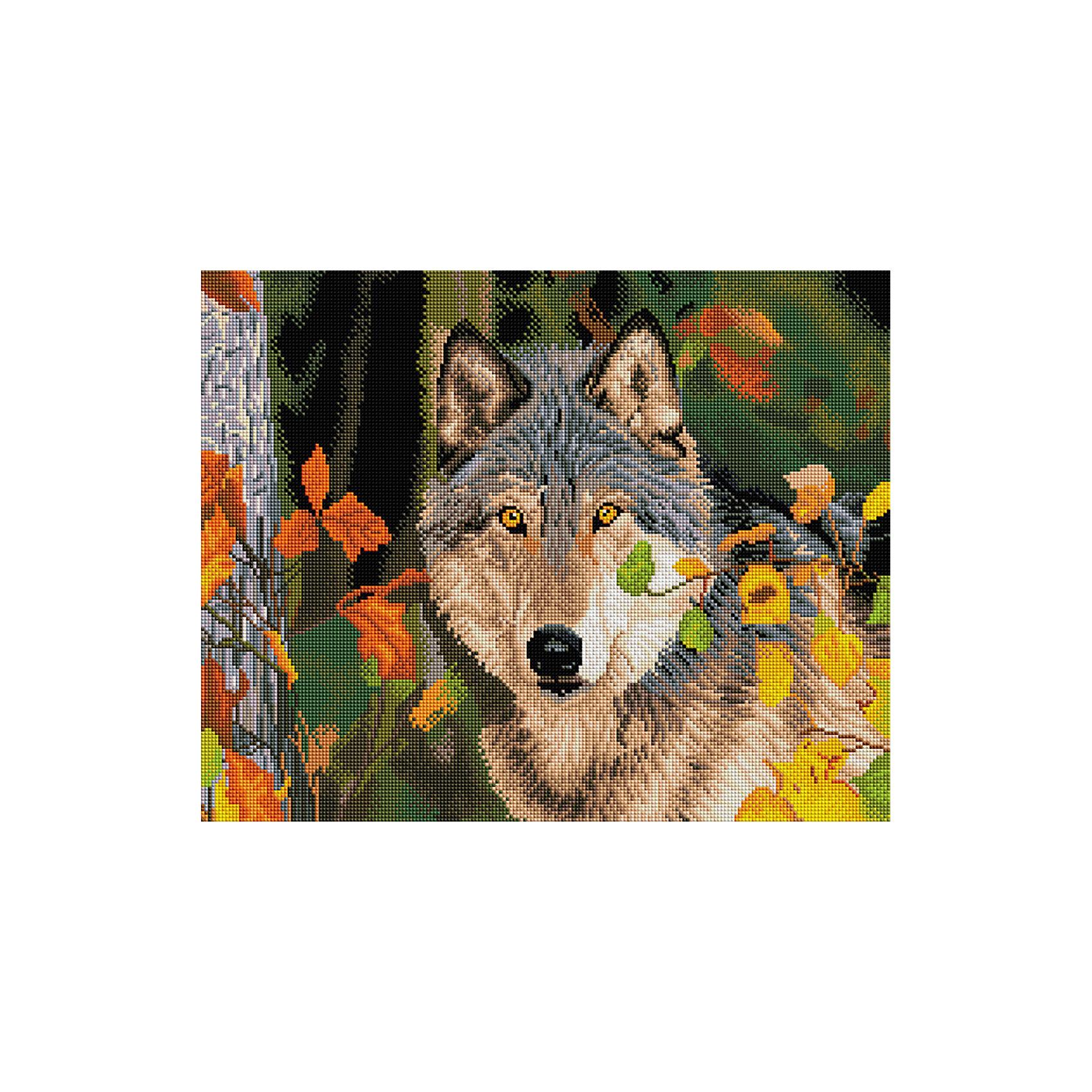 Алмазная мозаика Волк 40*50 смПоследняя цена<br>Характеристики:<br><br>• Предназначение: для занятий творчеством в технике алмазной живописи<br>• Тематика: Животные<br>• Пол: для девочек<br>• Уровень сложности: средний<br>• Материал: дерево, бумага, акрил, пластик<br>• Цвет: белый, серый, черный, оттенки коричневого и др.<br>• Количество цветов: 24<br>• Комплектация: холст на подрамнике, стразы, пинцет, карандаш для камней, клей, лоток для камней, инструкция<br>• Размеры (Ш*Д): 40*50 см<br>• Тип выкладки камней: сплошное заполнение рисунка<br>• Стразы квадратной формы <br>• Вес: 900 г <br>• Упаковка: картонная коробка<br><br>Алмазная мозаика Волк 40*50 см – это набор для создания картины в технике алмазной живописи. Набор для творчества включает в себя холст, на который нанесена схема рисунка, комплекта разноцветных страз квадратной формы, подрамника и инструментов для выкладки узора. Все использованные в наборе материалы экологичные и нетоксичные. Картина выполняется в технике сплошного заполнения декоративными элементами поверхности холста, что обеспечивает высокую реалистичность рисунка. На схеме изображен волк в осеннем лесу. <br>Готовые наборы для алмазной мозаики – это оптимальный вариант для любителей рукоделия, так как в них предусмотрены все материалы в требуемом для изготовления картины количестве. Занятия алмазной живописью позволят развивать навыки чтения схем, выполнения заданий по образцу, будут способствовать внимательности, терпению и развитию мелкой моторики. <br>Наборы алмазной мозаики могут быть преподнесены в качестве подарка не только девочкам, но и взрослым любительницам рукоделия.<br><br>Алмазную мозаику Волк 40*50 см можно купить в нашем интернет-магазине.<br><br>Ширина мм: 420<br>Глубина мм: 520<br>Высота мм: 50<br>Вес г: 900<br>Возраст от месяцев: 96<br>Возраст до месяцев: 2147483647<br>Пол: Женский<br>Возраст: Детский<br>SKU: 5217144