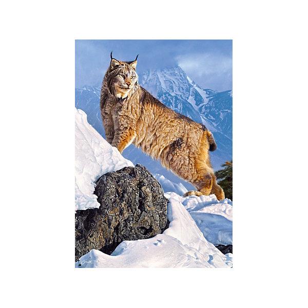 Пазл Рысь в горах, 1000 деталей, CastorlandПазлы классические<br>Пазл Рысь в горах, 1000 деталей, Castorland, (Касторленд)<br><br>Характеристики:<br><br>• яркие цвета<br>• привлекательная картинка<br>• количество деталей: 1000<br>• размер пазла: 68х47 см<br>• размер упаковки: 35х25х5 см<br><br>Набор пазлов от Касторленд позволит ребенку собрать красивую картинку с изображением рыси в снежных горах. В набор входит 1000 четких деталей из плотного картона. Игра с пазлами хорошо развивает логическое мышление, моторику рук, усидчивость и пространственное мышление.<br><br>Пазл Рысь в горах, 1000 деталей, Castorland, (Касторленд) можно купить в нашем интернет-магазине.<br><br>Ширина мм: 350<br>Глубина мм: 50<br>Высота мм: 250<br>Вес г: 500<br>Возраст от месяцев: 144<br>Возраст до месяцев: 2147483647<br>Пол: Унисекс<br>Возраст: Детский<br>SKU: 5244649