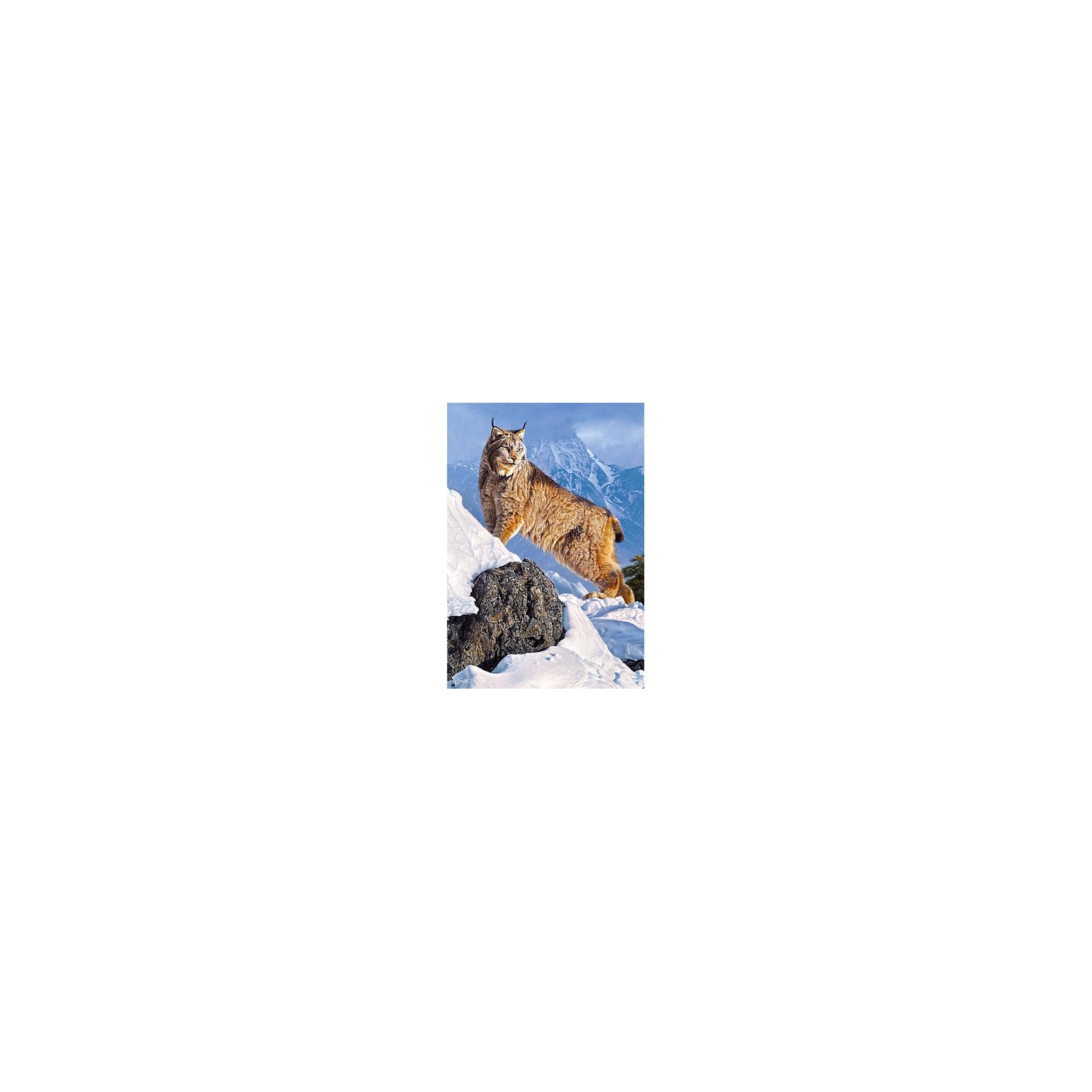 Пазл Рысь в горах, 1000 деталей, CastorlandПазлы для детей постарше<br>Пазл Рысь в горах, 1000 деталей, Castorland, (Касторленд)<br><br>Характеристики:<br><br>• яркие цвета<br>• привлекательная картинка<br>• количество деталей: 1000<br>• размер пазла: 68х47 см<br>• размер упаковки: 35х25х5 см<br><br>Набор пазлов от Касторленд позволит ребенку собрать красивую картинку с изображением рыси в снежных горах. В набор входит 1000 четких деталей из плотного картона. Игра с пазлами хорошо развивает логическое мышление, моторику рук, усидчивость и пространственное мышление.<br><br>Пазл Рысь в горах, 1000 деталей, Castorland, (Касторленд) можно купить в нашем интернет-магазине.<br><br>Ширина мм: 350<br>Глубина мм: 50<br>Высота мм: 250<br>Вес г: 500<br>Возраст от месяцев: 144<br>Возраст до месяцев: 2147483647<br>Пол: Унисекс<br>Возраст: Детский<br>SKU: 5244649