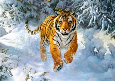 Пазл Амурский тигр , 500 деталей, Castorland