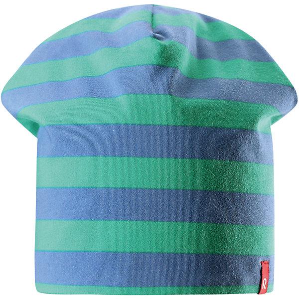 Шапка Frappe для мальчика ReimaШапки и шарфы<br>Характеристики товара:<br><br>• цвет: зеленый/синий<br>• быстросохнущий материал<br>• состав: 65% хлопок, 30% полиэстер, 5% эластан<br>• температурный режим: от +5°до +15°С<br>• эластичный материал<br>• сплошная подкладка: влаговыводящий трикотаж<br>• двухсторонняя<br>• отводящий влагу материал Play Jersey<br>• декоративный логотип<br>• фактор защиты от ультрафиолета: 40+<br>• комфортная посадка<br>• страна производства: Китай<br>• страна бренда: Финляндия<br>• коллекция: весна-лето 2017<br><br>Детский головной убор может быть модным и удобным одновременно! Стильная шапка поможет обеспечить ребенку комфорт и дополнить наряд. Она отлично смотрится с различной одеждой. Шапка удобно сидит и аккуратно выглядит. Проста в уходе, долго служит. Стильный дизайн разрабатывался специально для детей. Отличная защита от солнца!<br><br>Одежда и обувь от финского бренда Reima пользуется популярностью во многих странах. Эти изделия стильные, качественные и удобные. Для производства продукции используются только безопасные, проверенные материалы и фурнитура. Порадуйте ребенка модными и красивыми вещами от Reima! <br><br>Шапку для мальчика от финского бренда Reima (Рейма) можно купить в нашем интернет-магазине.<br>Ширина мм: 89; Глубина мм: 117; Высота мм: 44; Вес г: 155; Цвет: зеленый; Возраст от месяцев: 48; Возраст до месяцев: 84; Пол: Мужской; Возраст: Детский; Размер: 54,50; SKU: 5267895;