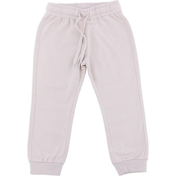 Брюки для мальчика SELAСпортивная одежда<br>Брюки для мальчика SELA (Села)<br><br>Характеристики:<br><br>• длина: полная с манжетами<br>• прямой, зауженный к низу силуэт<br>• состав: 60% хлопок, 40% полиэстер<br>• коллекция: весна 2017<br>• бежевый<br><br>Брюки для мальчика от известного бренда Sela очень удобны для каждого мальчика. Они имеют прямой силуэт, который заужен к низу и дополнен манжетами. Широкая резинка и завязки на поясе обеспечат удобство при ношении. Модель не сковывает движений ребенка даже во время самых активных игр. <br><br>Брюки для мальчика SELA (Села) вы можете купить в нашем интернет-магазине.<br>Ширина мм: 215; Глубина мм: 88; Высота мм: 191; Вес г: 336; Цвет: бежевый; Возраст от месяцев: 48; Возраст до месяцев: 60; Пол: Мужской; Возраст: Детский; Размер: 110,92,116,104,98; SKU: 5302343;
