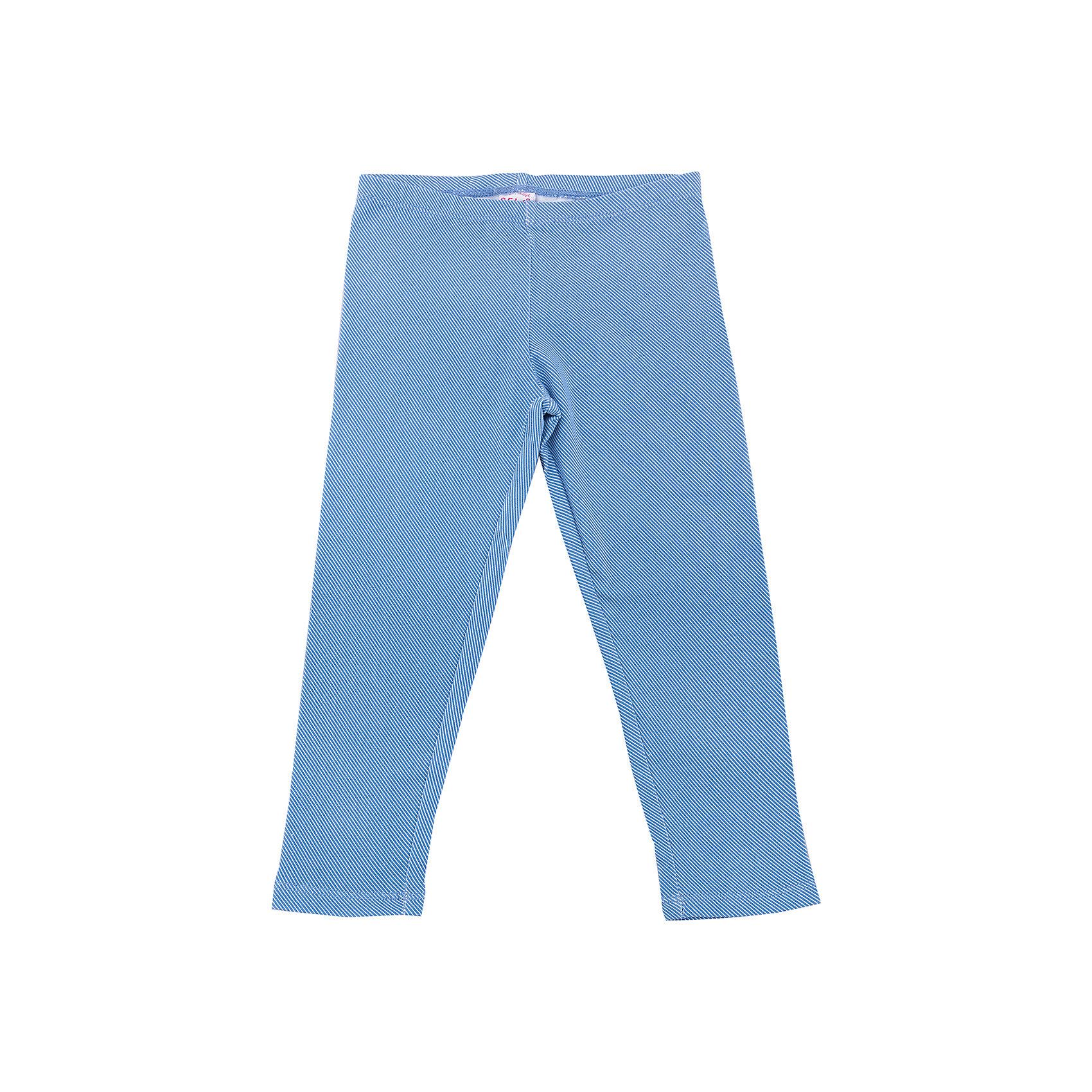 Леггинсы для девочки SELAХарактеристики товара:<br><br>• цвет: голубой<br>• состав: 95% хлопок, 5% эластан<br>• эластичный материал<br>• расцветка под деним<br>• пояс: мягкая резинка <br>• коллекция весна-лето 2017<br>• страна бренда: Российская Федерация<br><br>Вещи из новой коллекции SELA продолжают радовать удобством! Симпатичные леггинсы для девочки помогут разнообразить гардероб и обеспечить комфорт. Они отлично сочетаются с майками, футболками, куртками. В составе материала - натуральный хлопок.<br><br>Одежда, обувь и аксессуары от российского бренда SELA не зря пользуются большой популярностью у детей и взрослых! Модели этой марки - стильные и удобные, цена при этом неизменно остается доступной. Для их производства используются только безопасные, качественные материалы и фурнитура. Новая коллекция поддерживает хорошие традиции бренда! <br><br>Леггинсы для девочки от популярного бренда SELA (СЕЛА) можно купить в нашем интернет-магазине.<br><br>Ширина мм: 215<br>Глубина мм: 88<br>Высота мм: 191<br>Вес г: 336<br>Цвет: синий<br>Возраст от месяцев: 60<br>Возраст до месяцев: 72<br>Пол: Женский<br>Возраст: Детский<br>Размер: 116,110,92,98,104<br>SKU: 5302461