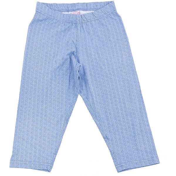Брюки для девочки SELAБрюки<br>Характеристики товара:<br><br>• цвет: синий<br>• сезон: демисезон, лето<br>• состав: 95% хлопок, 5% эластан<br>• легкий материал<br>• мягкая резинка в поясе<br>•  сиулэт свободный<br>• страна бренда: Россия<br><br>Вещи из новой коллекции SELA продолжают радовать удобством! Симпатичные брюки для девочки помогут разнообразить гардероб и обеспечить комфорт. Они отлично сочетаются с майками, футболками, куртками. В составе материала - натуральный хлопок.<br><br>Одежда, обувь и аксессуары от российского бренда SELA не зря пользуются большой популярностью у детей и взрослых!<br><br>Брюки для девочки от популярного бренда SELA (СЕЛА) можно купить в нашем интернет-магазине.<br>Ширина мм: 215; Глубина мм: 88; Высота мм: 191; Вес г: 336; Цвет: синий; Возраст от месяцев: 96; Возраст до месяцев: 108; Пол: Женский; Возраст: Детский; Размер: 134,128,122,152,146,140; SKU: 5302551;