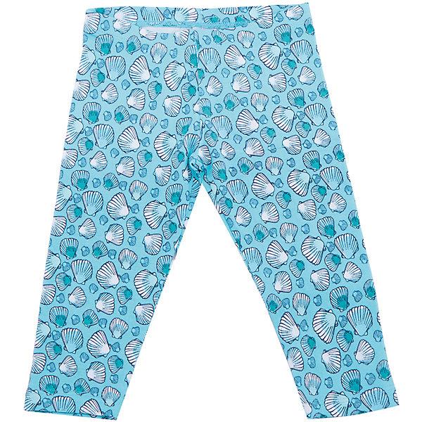 Леггинсы для девочки SELAЛеггинсы<br>Характеристики товара:<br><br>• цвет: голубой<br>• состав: 95% хлопок, 5% эластан<br>• эластичный материал<br>• мягкая резинка в поясе<br>• принт<br>• комфортная посадка<br>•  сиулэт прилегающий<br>• страна бренда: Россия<br><br>Вещи из новой коллекции SELA продолжают радовать удобством! Симпатичные брюки для девочки помогут разнообразить гардероб и обеспечить комфорт. Они отлично сочетаются с майками, футболками, куртками. В составе материала - натуральный хлопок.<br><br>Одежда, обувь и аксессуары от российского бренда SELA не зря пользуются большой популярностью у детей и взрослых! <br><br>Брюки для девочки от популярного бренда SELA (СЕЛА) можно купить в нашем интернет-магазине.<br>Ширина мм: 215; Глубина мм: 88; Высота мм: 191; Вес г: 336; Цвет: голубой; Возраст от месяцев: 18; Возраст до месяцев: 24; Пол: Женский; Возраст: Детский; Размер: 92,110,104,98,116; SKU: 5302612;