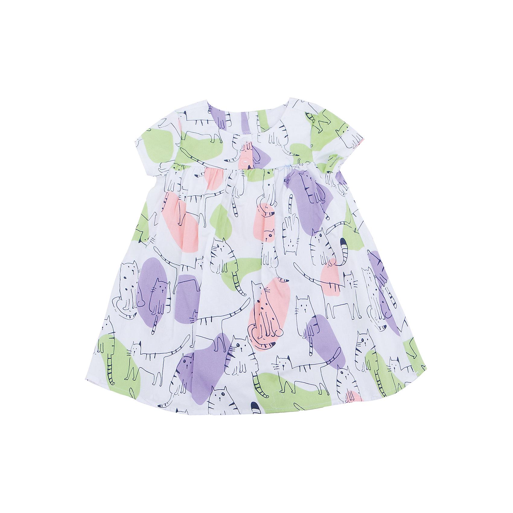 Платье для девочки SELAПлатья и сарафаны<br>Характеристики товара:<br><br>• цвет: белый<br>• состав: 100% хлопок<br>• сезон: лето<br>• принт<br>• длина выше колена<br>• корткие рукава<br>• страна бренда: Россия<br><br>Платье для девочки поможет разнообразить гардероб ребенка и обеспечить комфорт.  Оно отлично сочетается с босоножками, сандалями или туфельками. Стильная и удобная вещь!<br><br>Одежда, обувь и аксессуары от российского бренда SELA не зря пользуются большой популярностью у детей и взрослых!<br><br>Платье для девочки от популярного бренда SELA (СЕЛА) можно купить в нашем интернет-магазине.<br><br>Ширина мм: 236<br>Глубина мм: 16<br>Высота мм: 184<br>Вес г: 177<br>Цвет: белый<br>Возраст от месяцев: 60<br>Возраст до месяцев: 72<br>Пол: Женский<br>Возраст: Детский<br>Размер: 116,92,98,104,110<br>SKU: 5305431