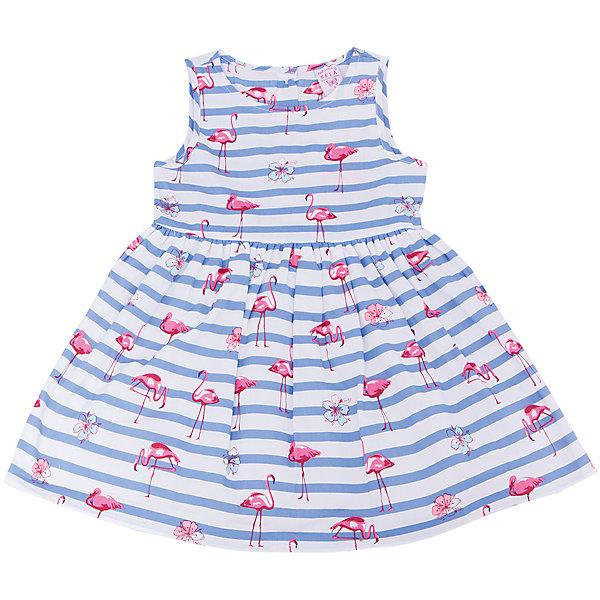 Платье для девочки SELAПлатья и сарафаны<br>Характеристики товара:<br><br>• цвет: разноцветный<br>• состав: 100% хлопок; подкладка: 100% хлопок; отделка: 100% ПЭ<br>• сезон: лето<br>• принт<br>• длина выше колена<br>• корткие рукава<br>• страна бренда: Россия<br><br>Платье для девочки поможет разнообразить гардероб ребенка и обеспечить комфорт.  Оно отлично сочетается с босоножками, сандалями или туфельками. Стильная и удобная вещь!<br><br>Одежда, обувь и аксессуары от российского бренда SELA не зря пользуются большой популярностью у детей и взрослых!<br><br>Платье для девочки от популярного бренда SELA (СЕЛА) можно купить в нашем интернет-магазине.<br>Ширина мм: 236; Глубина мм: 16; Высота мм: 184; Вес г: 177; Цвет: голубой; Возраст от месяцев: 60; Возраст до месяцев: 72; Пол: Женский; Возраст: Детский; Размер: 116,98,104,110; SKU: 5305462;