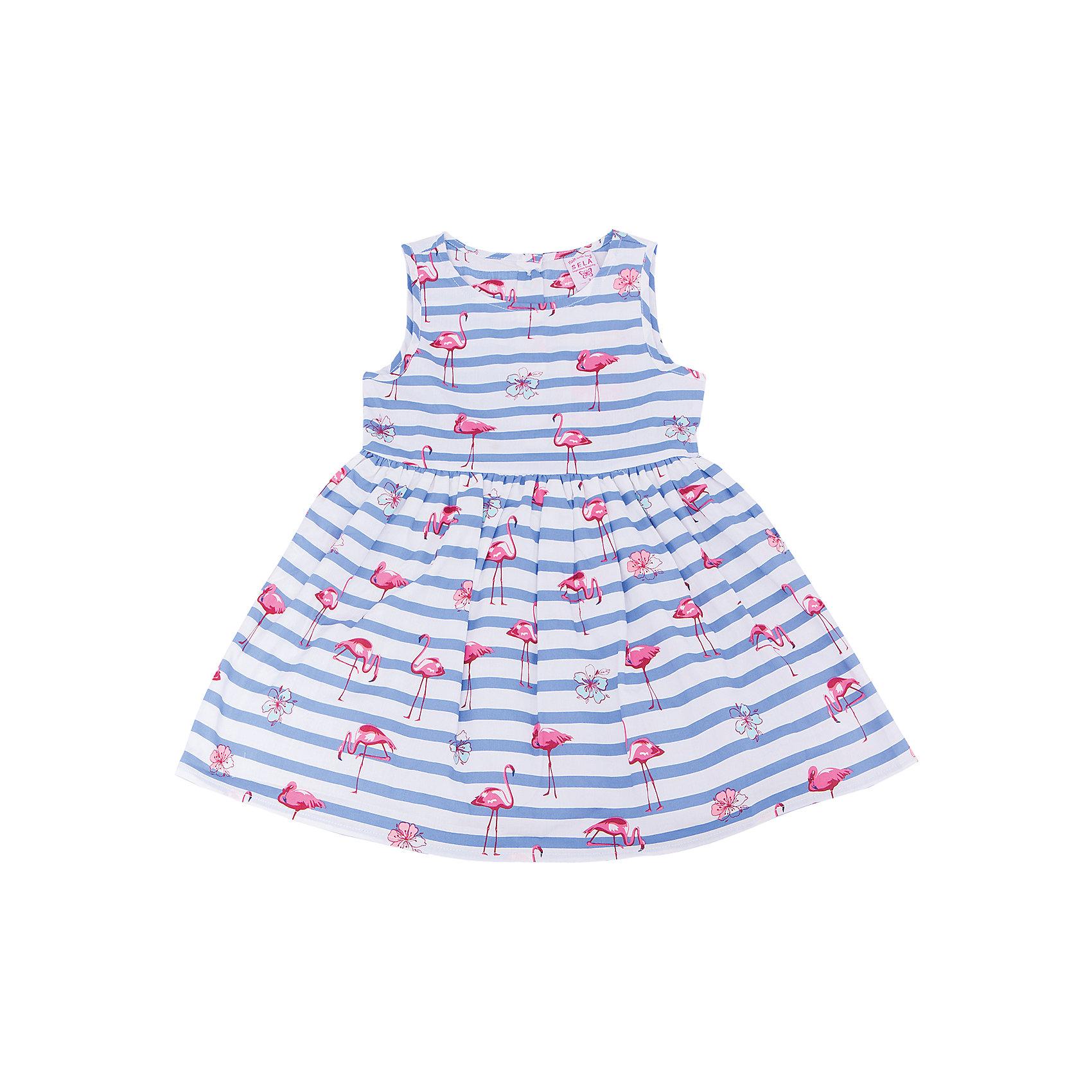 Платье для девочки SELAПолоска<br>Характеристики товара:<br><br>• цвет: разноцветный<br>• состав: 100% хлопок; подкладка: 100% хлопок; отделка: 100% ПЭ<br>• сезон: лето<br>• принт<br>• длина выше колена<br>• корткие рукава<br>• страна бренда: Россия<br><br>Платье для девочки поможет разнообразить гардероб ребенка и обеспечить комфорт.  Оно отлично сочетается с босоножками, сандалями или туфельками. Стильная и удобная вещь!<br><br>Одежда, обувь и аксессуары от российского бренда SELA не зря пользуются большой популярностью у детей и взрослых!<br><br>Платье для девочки от популярного бренда SELA (СЕЛА) можно купить в нашем интернет-магазине.<br><br>Ширина мм: 236<br>Глубина мм: 16<br>Высота мм: 184<br>Вес г: 177<br>Цвет: голубой<br>Возраст от месяцев: 60<br>Возраст до месяцев: 72<br>Пол: Женский<br>Возраст: Детский<br>Размер: 116,98,104,110<br>SKU: 5305462