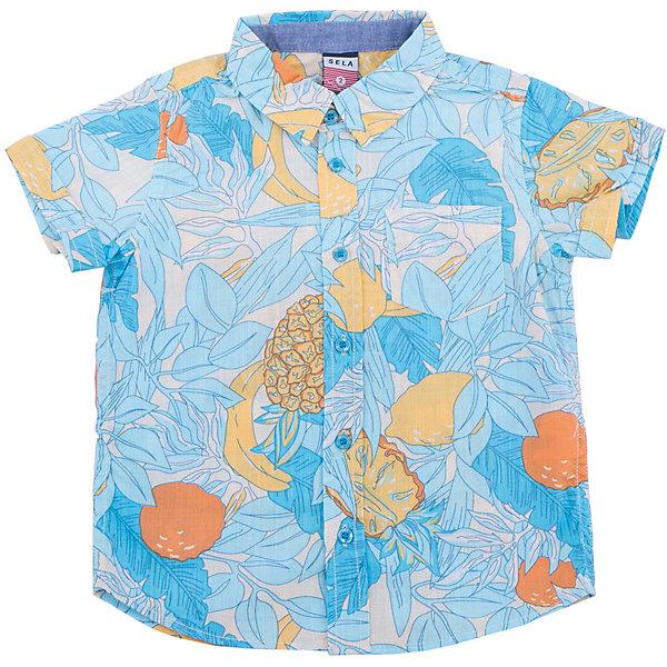 Рубашка для мальчика SELAБлузки и рубашки<br>Характеристики товара:<br><br>• цвет: голубой<br>• сезон: лето<br>• состав: 100% хлопок<br>• пуговицы<br>• короткие рукава<br>• отложной воротник<br>• принт<br>• страна бренда: Россия<br><br>Модная рубашка для мальчика разнообразит гардероб ребенка. Она отлично сочетается с джинсами, брюками или шортами. Очень стильно смотрится!<br><br>Одежда, обувь и аксессуары от российского бренда SELA не зря пользуются большой популярностью у детей и взрослых! Модели этой марки - стильные и удобные, цена при этом неизменно остается доступной. <br><br>Рубашку для мальчика от популярного бренда SELA (СЕЛА) можно купить в нашем интернет-магазине.<br><br>Ширина мм: 174<br>Глубина мм: 10<br>Высота мм: 169<br>Вес г: 157<br>Цвет: белый<br>Возраст от месяцев: 60<br>Возраст до месяцев: 72<br>Пол: Мужской<br>Возраст: Детский<br>Размер: 116,104,110,92,98<br>SKU: 5305544