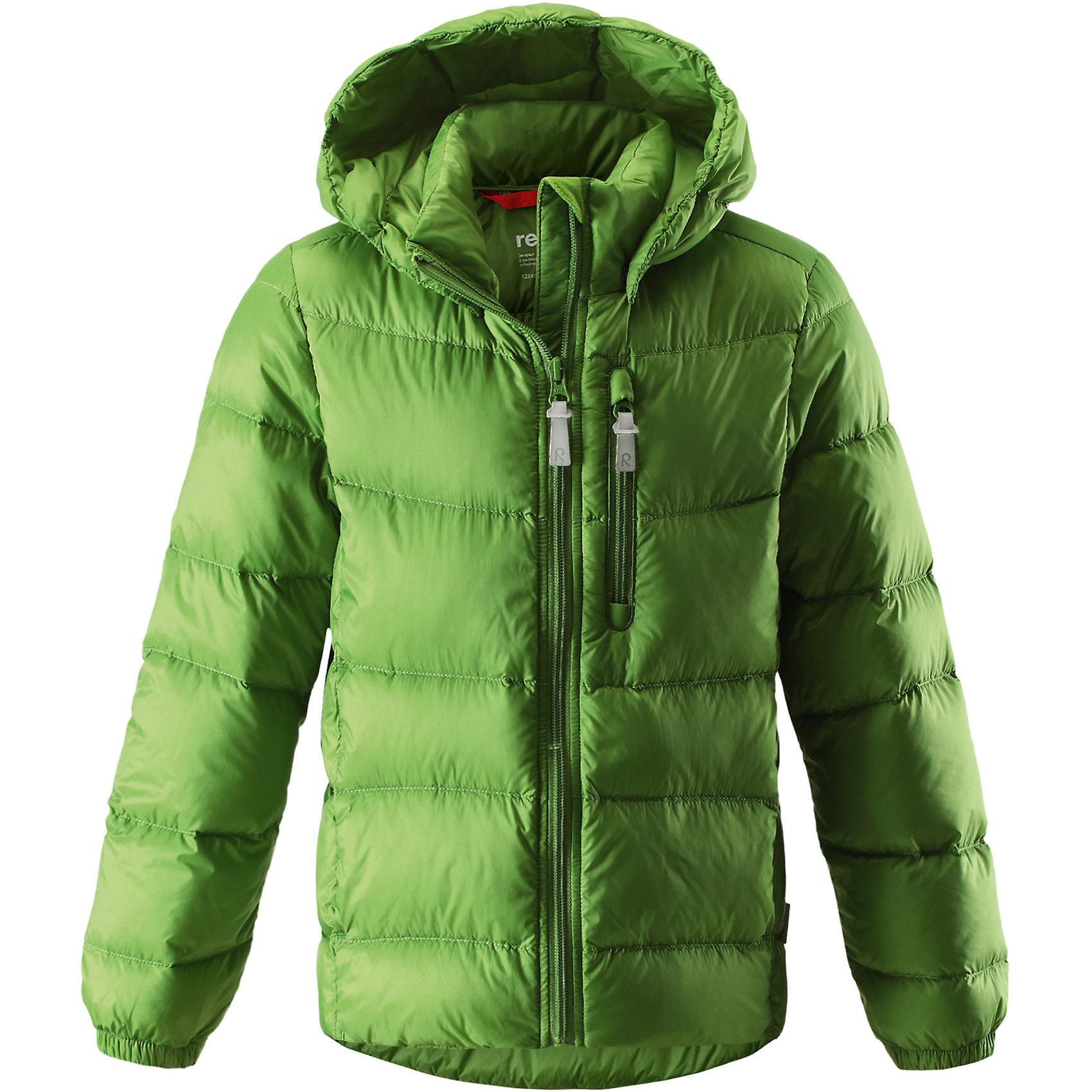 Куртка Midnight ReimaОдежда<br>Куртка<br>Состав:<br>100% ПЭ, ПУ-покрытие<br><br>Ширина мм: 356<br>Глубина мм: 10<br>Высота мм: 245<br>Вес г: 519<br>Цвет: зеленый<br>Возраст от месяцев: 72<br>Возраст до месяцев: 84<br>Пол: Унисекс<br>Возраст: Детский<br>Размер: 122,164,98,110,128,140,152<br>SKU: 5309310