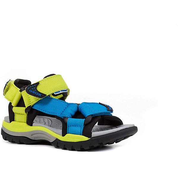 Сандалии для мальчика GEOXСандалии<br>Характеристики товара:<br><br>• цвет: салатовый/голубой<br>• внешний материал: текстиль<br>• внутренний материал: текстиль<br>• стелька: искусственные материалы<br>• подошва: резина<br>• застежка: липучка<br>• открытый носок<br>• спортивный стиль<br>• устойчивая подошва<br>• мембранная технология<br>• декорированы логотипом<br>• коллекция: весна-лето 2017<br>• страна бренда: Италия<br><br>Легкие удобные сандали помогут обеспечить ребенку комфорт и дополнить наряд. Универсальный цвет позволяет надевать их под одежду разных расцветок. Сандали удобно сидят на ноге и стильно смотрятся. Отличный вариант для жаркой погоды!<br><br>Обувь от бренда GEOX - это классический пример итальянского стиля и высокого качества, известных по всему миру. Модели этой марки - неизменно модные и комфортные. Для их производства используются только безопасные, качественные материалы и фурнитура. Отличие этой линейки обуви - мембранная технология, которая обеспечивает естественное дыхание обуви и в то же время не пропускает воду. Это особенно важно для детской обуви!<br><br>Сандали от итальянского бренда GEOX (ГЕОКС) можно купить в нашем интернет-магазине.<br><br>Ширина мм: 262<br>Глубина мм: 176<br>Высота мм: 97<br>Вес г: 427<br>Цвет: зеленый<br>Возраст от месяцев: 96<br>Возраст до месяцев: 108<br>Пол: Мужской<br>Возраст: Детский<br>Размер: 32,28,33,31,30,29<br>SKU: 5335729