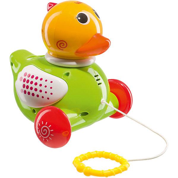Игрушка-каталка Happy Baby DuckyКаталки и качалки<br>Характеристики товара:<br><br>• возраст: от 1 года;<br>• материал: пластик;<br>• в комплекте: каталка, шарики;<br>• тип батареек: 2 батарейки АА;<br>• наличие батареек: в комплект не входят;<br>• размер упаковки: 20х15х18 см;<br>• вес упаковки: 410 гр.;<br>• страна производитель: Китай.<br><br>Игрушка-каталка «Ducky» Happy Baby — забавная игрушка в виде желтого утенка с веревочкой и кольцом. Держа за колечко, малыш катит уточку по полу, развивая навыки ходьбы, координацию движений и равновесие. Во время движения хохолок загорается красным светом, а уточка крякает.<br><br>На голове у уточки расположено специальное отверстие для шариков. Кинув туда шарик, малыш будет наблюдать, как он скатывается вниз под забавные мелодии. В процессе игры у ребенка развиваются мелкая моторика рук, тактильные ощущения, музыкальный слух, воображение.<br><br>Игрушку-каталку «Ducky» Happy Baby можно приобрести в нашем интернет-магазине.<br><br>Ширина мм: 9999<br>Глубина мм: 9999<br>Высота мм: 9999<br>Вес г: 9999<br>Возраст от месяцев: 12<br>Возраст до месяцев: 36<br>Пол: Унисекс<br>Возраст: Детский<br>SKU: 5345696