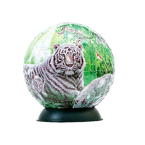 Пазл-шар Волшебный лес, 240 деталей3D пазлы<br>Характеристики товара:<br><br>• возраст: от 6 лет;<br>• материал: пластик;<br>• в комплекте: 240 элементов, подставка;<br>• диаметр шара: 15 см;<br>• размер упаковки: 23х21,5х5 см;<br>• вес упаковки: 370 гр.;<br>• страна производитель: Россия.<br><br>Пазл-шар «Волшебный лес» Step Puzzle — оригинальный пазл, элементы которого имеют изогнутую форму и собираются вместе, образуя шар. Собрав его, получается объемная фигура с яркими изображениями.<br><br>В процессе сборки пазла развиваются мелкая моторика рук, усидчивость, внимательность, логическое мышление. Все детали выполнены из качественного прочного пластика и надежно скрепляются между собой.<br><br>Пазл-шар «Волшебный лес» Step Puzzle можно приобрести в нашем интернет-магазине.<br>Ширина мм: 230; Глубина мм: 215; Высота мм: 50; Вес г: 370; Возраст от месяцев: 72; Возраст до месяцев: 2147483647; Пол: Женский; Возраст: Детский; Количество деталей: 240; SKU: 5346233;