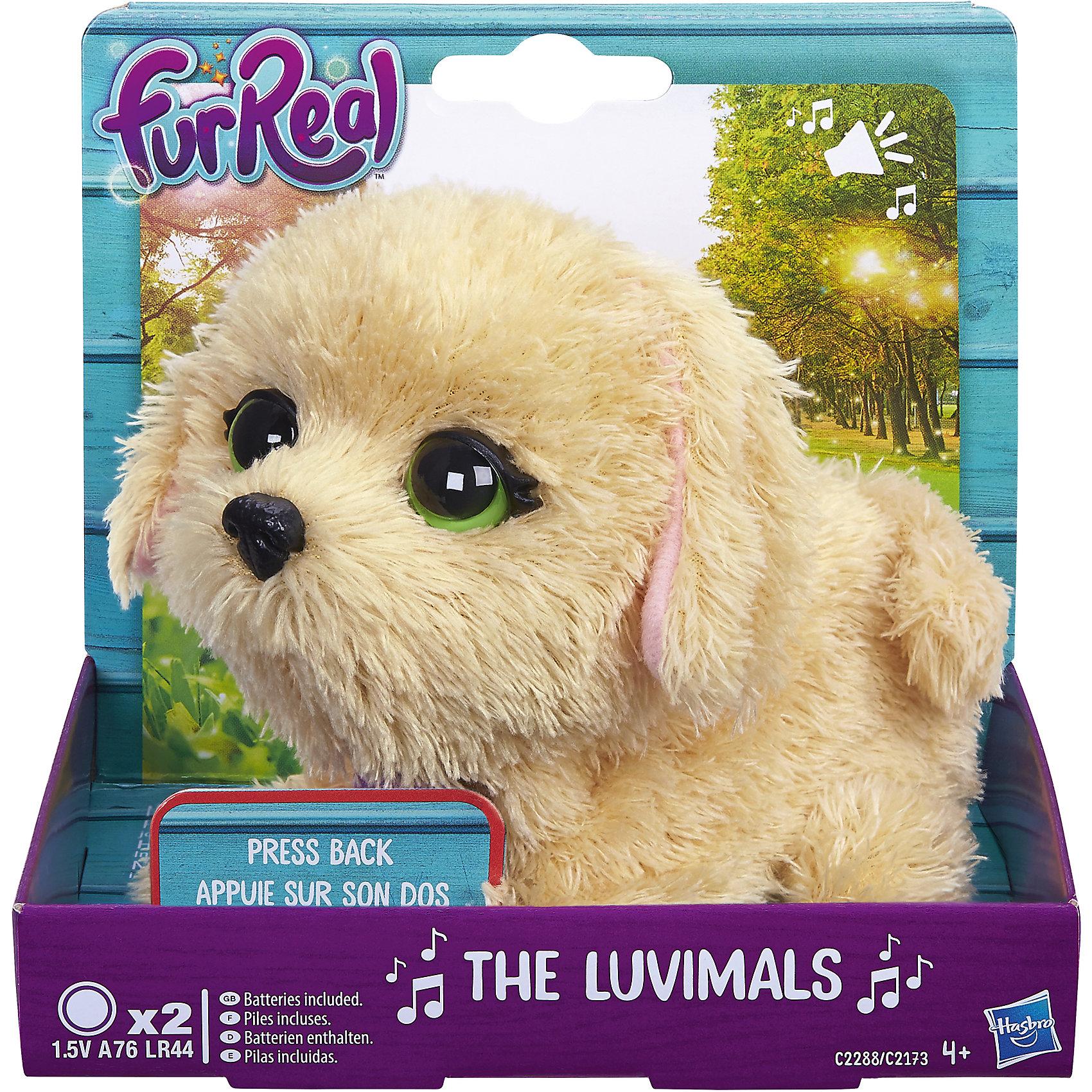 Щенок, FurReal Friends, HasbroМягкие игрушки животные<br>Характеристики:<br><br>• Вид игр: сюжетно-ролевые, коллекционирование<br>• Пол: для девочек<br>• Коллекция: Поющие зверята<br>• Материал: текстиль, пластик<br>• Батарейки: 2 х A76 / LR44 (предусмотрены в комплекте)<br>• Высота игрушки: 9-11 см<br>• Поворачивают голову<br>• Умеют петь<br>• Вес в упаковке: 130 г<br>• Размеры упаковки (Д*Ш*В): 11,4*10,2*12,7 см<br>• Упаковка: картонная коробка <br><br>Поющие зверята, Furreal, C2173/C2174 – это коллекция милых пушистых животных от Хасбро, которые умеют петь. Все зверушки выполнены из плюша с ворсом, за счет чего они очень приятные на ощупь, большие выразительные глазки придают игрушкам очень миловидный облик. У каждого зверька на шее имеется пластиковый кулон с брендовой надписью. Игрушки умеют не только петь соло, но и дуэтом. Благодаря компактному размеру, их можно брать с собой в дорогу или в качестве талисмана. Щенок выполнен из плюша бежевого цвета и у него большие зеленые глаза. Сюжетно-ролевые игры с музыкальными игрушками способствуют развитию художественно-эстетического и музыкального вкуса, а разыгрываемые сюжетно-ролевые игры с домашними любимцами развивают чувство ответственности и заботы. <br><br>Поющих зверят, Furreal, C2173/C2174 можно купить в нашем интернет-магазине.<br><br>Ширина мм: 102<br>Глубина мм: 127<br>Высота мм: 114<br>Вес г: 151<br>Возраст от месяцев: 48<br>Возраст до месяцев: 144<br>Пол: Женский<br>Возраст: Детский<br>SKU: 5363496
