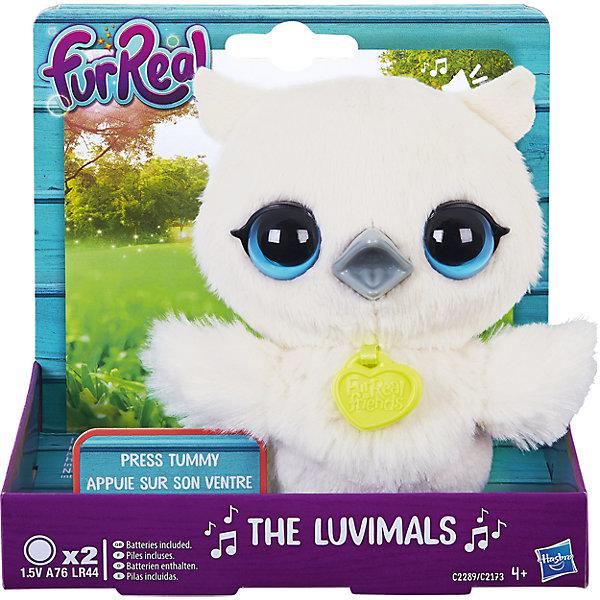 Сова, FurReal Friends, HasbroМягкие игрушки животные<br>Характеристики:<br><br>• Вид игр: сюжетно-ролевые, коллекционирование<br>• Пол: для девочек<br>• Коллекция: Поющие зверята<br>• Материал: текстиль, пластик<br>• Батарейки: 2 х A76 / LR44 (предусмотрены в комплекте)<br>• Высота игрушки: 9-11 см<br>• Поворачивают голову<br>• Умеют петь<br>• Вес в упаковке: 130 г<br>• Размеры упаковки (Д*Ш*В): 11,4*10,2*12,7 см<br>• Упаковка: картонная коробка <br><br>Поющие зверята, Furreal, C2173/C2174 – это коллекция милых пушистых животных от Хасбро, которые умеют петь. Все зверушки выполнены из плюша с ворсом, за счет чего они очень приятные на ощупь, большие выразительные глазки придают игрушкам очень миловидный облик. У каждого зверька на шее имеется пластиковый кулон с брендовой надписью. Игрушки умеют не только петь соло, но и дуэтом. Благодаря компактному размеру, их можно брать с собой в дорогу или в качестве талисмана. Совенок выполнен из плюша белого цвета и у него большие голубые глаза. Сюжетно-ролевые игры с музыкальными игрушками способствуют развитию художественно-эстетического и музыкального вкуса, а разыгрываемые сюжетно-ролевые игры с домашними любимцами развивают чувство ответственности и заботы. <br><br>Поющих зверят, Furreal, C2173/C2174 можно купить в нашем интернет-магазине.<br><br>Ширина мм: 102<br>Глубина мм: 127<br>Высота мм: 114<br>Вес г: 151<br>Возраст от месяцев: 48<br>Возраст до месяцев: 144<br>Пол: Женский<br>Возраст: Детский<br>SKU: 5363497