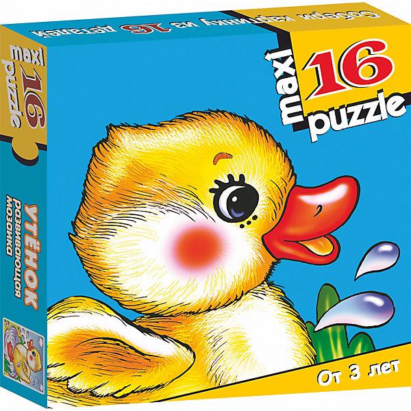 Развивающая мозаика Утёнок, Дрофа-МедиаМозаика<br>Характеристики развивающую  мозаику Утёнок:<br><br>- возраст: от 3 лет<br>- пол: для мальчиков и девочек<br>- количество деталей: 16.<br>- размер упаковки: 16.5 * 16.5 * 3 см.<br>- упаковка: картонная коробка.<br>- бренд: Дрофа-Медиа<br>- страна обладатель бренда: Россия.<br><br>Крупные и яркие детали мозаики привлекут внимание даже самых маленьких детей. Собирая картинку из 16 частей, малыш учится соотносить отдельные элементы и целое изображение, подбирать фрагменты по цвету и форме. Игра развивает наблюдательность, усидчивость, зрительное восприятие. Постоянно манипулируя деталями мозаики, ребёнок совершенствует мелкую моторику рук. Размер собранного поля 31,5х33 см. Материалы: бумага, картон.<br><br>Развивающую мозаику Утёнок издательства Дрофа-Медиа можно купить в нашем интернет-магазине.<br>Ширина мм: 165; Глубина мм: 30; Высота мм: 165; Вес г: 170; Возраст от месяцев: 36; Возраст до месяцев: 2147483647; Пол: Унисекс; Возраст: Детский; SKU: 5386299;