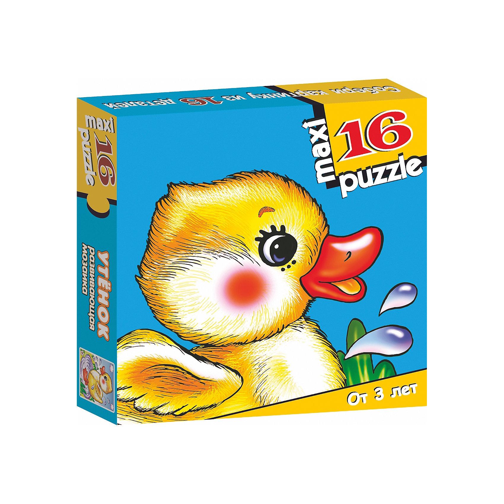 Развивающая мозаика Утёнок, Дрофа-МедиаМозаика<br>Характеристики развивающую  мозаику Утёнок:<br><br>- возраст: от 3 лет<br>- пол: для мальчиков и девочек<br>- количество деталей: 16.<br>- размер упаковки: 16.5 * 16.5 * 3 см.<br>- упаковка: картонная коробка.<br>- бренд: Дрофа-Медиа<br>- страна обладатель бренда: Россия.<br><br>Крупные и яркие детали мозаики привлекут внимание даже самых маленьких детей. Собирая картинку из 16 частей, малыш учится соотносить отдельные элементы и целое изображение, подбирать фрагменты по цвету и форме. Игра развивает наблюдательность, усидчивость, зрительное восприятие. Постоянно манипулируя деталями мозаики, ребёнок совершенствует мелкую моторику рук. Размер собранного поля 31,5х33 см. Материалы: бумага, картон.<br><br>Развивающую мозаику Утёнок издательства Дрофа-Медиа можно купить в нашем интернет-магазине.<br><br>Ширина мм: 165<br>Глубина мм: 30<br>Высота мм: 165<br>Вес г: 170<br>Возраст от месяцев: 36<br>Возраст до месяцев: 2147483647<br>Пол: Унисекс<br>Возраст: Детский<br>SKU: 5386299